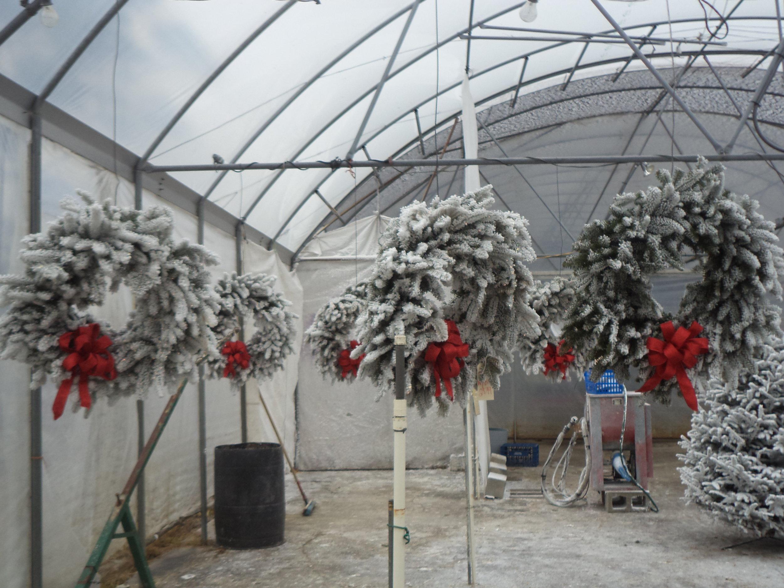 Christmass wreath.JPG
