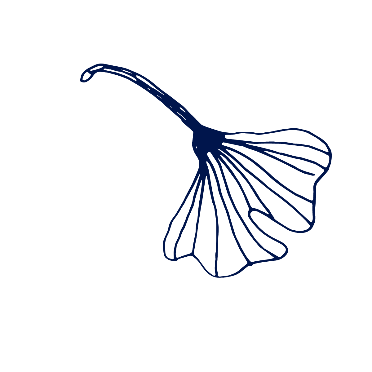Nancy Byrne blue gingko down.png