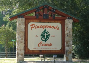 piney-woods.jpg