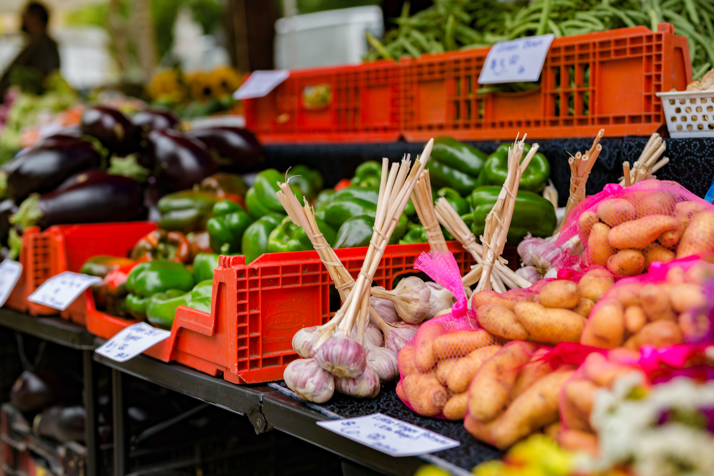MadisonArea Farmers' Market Resource -
