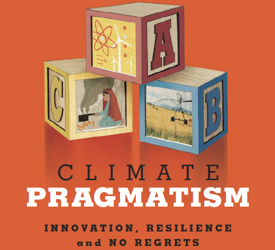 Climate Pragmatism: Innovation, Resilience and No Regrets