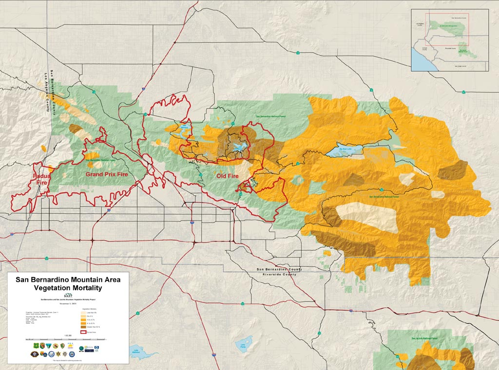 This map represents dying trees in the San Bernardino National Forest, an important factor of the fast spread of the fires. The percentage of dead trees in the area is greater than living trees, illustrated by the darker colors.