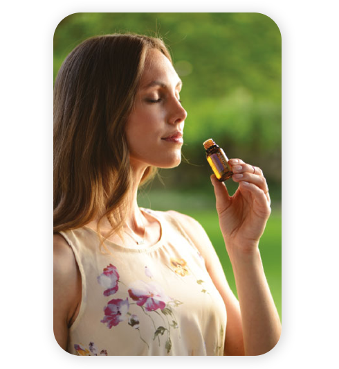 doterra essential oils emotional benefits of aromatherapy class kit