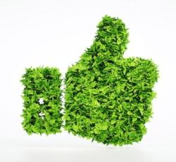 environmental-policy.jpg