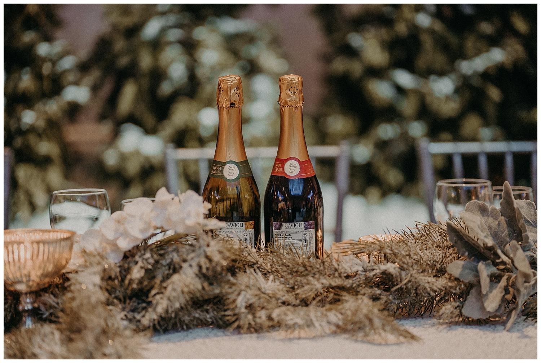 Katie Marie Photography | Hamilton Ontario Wedding Photographer | Ancaster Mill Winter Wedding | Oakville Conference Centre Wedding | RBG Wedding | Royal Botanical Gardens Wedding_0234.jpg
