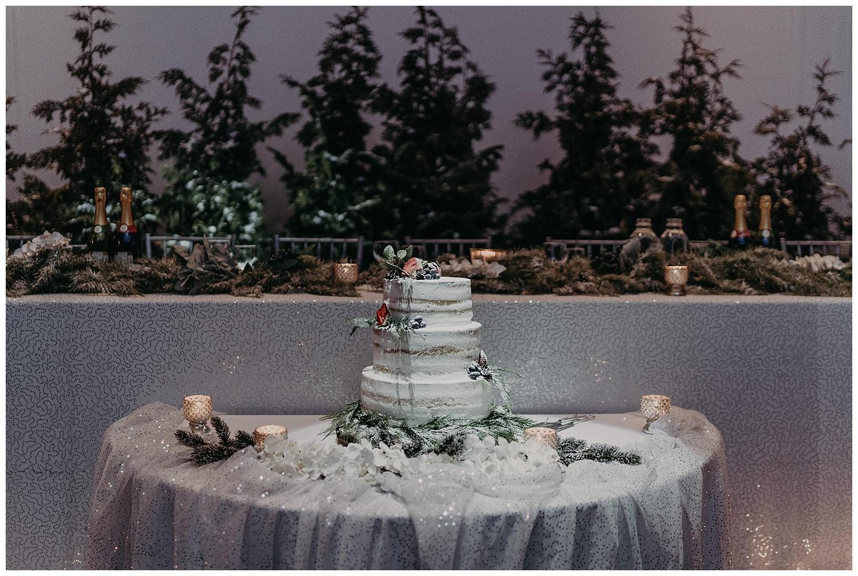 Katie Marie Photography | Hamilton Ontario Wedding Photographer | Ancaster Mill Winter Wedding | Oakville Conference Centre Wedding | RBG Wedding | Royal Botanical Gardens Wedding_0235.jpg