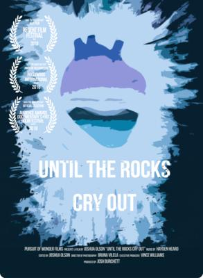 Until Rocks Cry Out.jpg