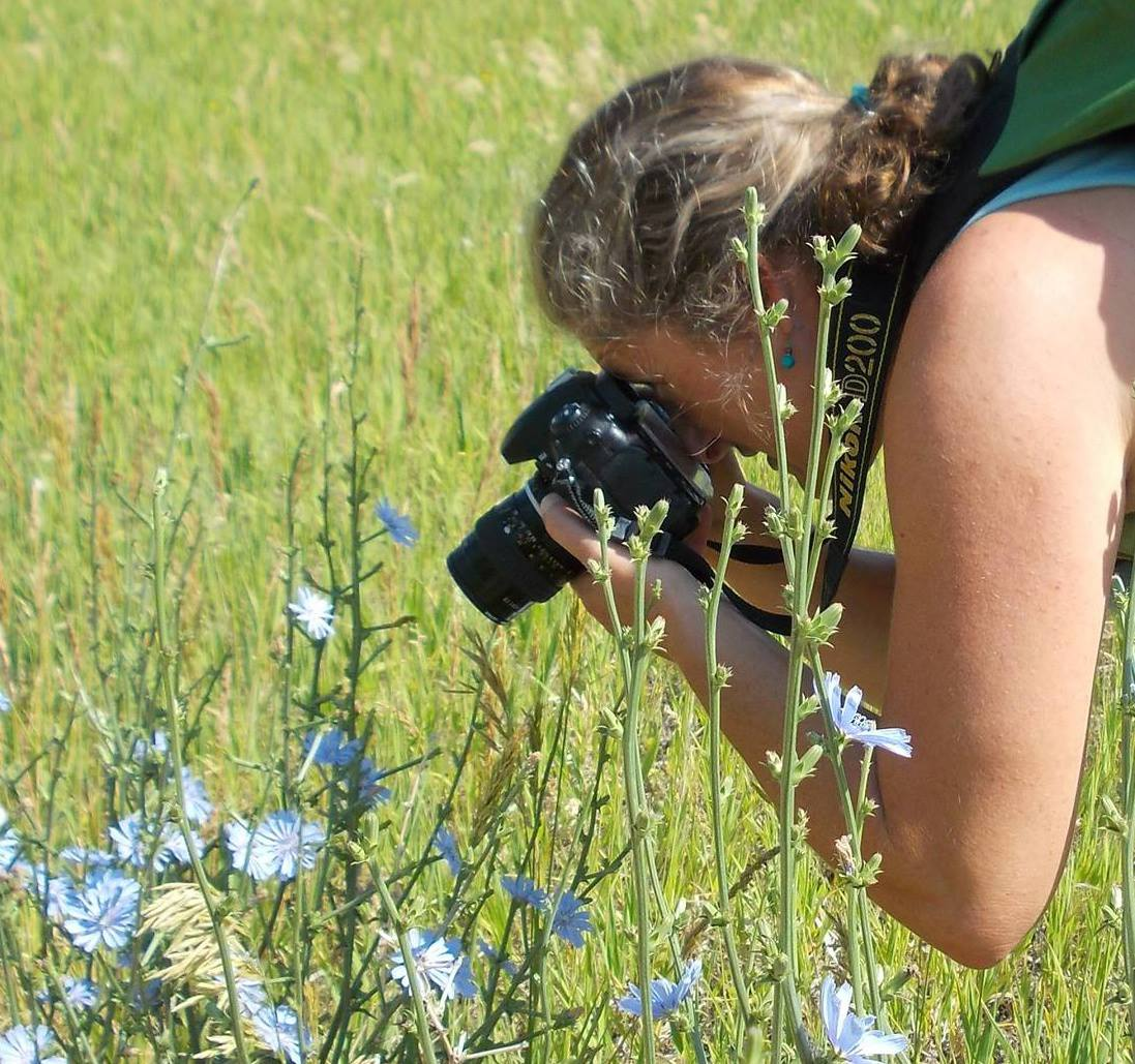 Colorado native plants are one of Cheryl's great loves. She spends altogether too much time photographing and chatting with wildflowers once spring arrives to the Rocky Mountains.