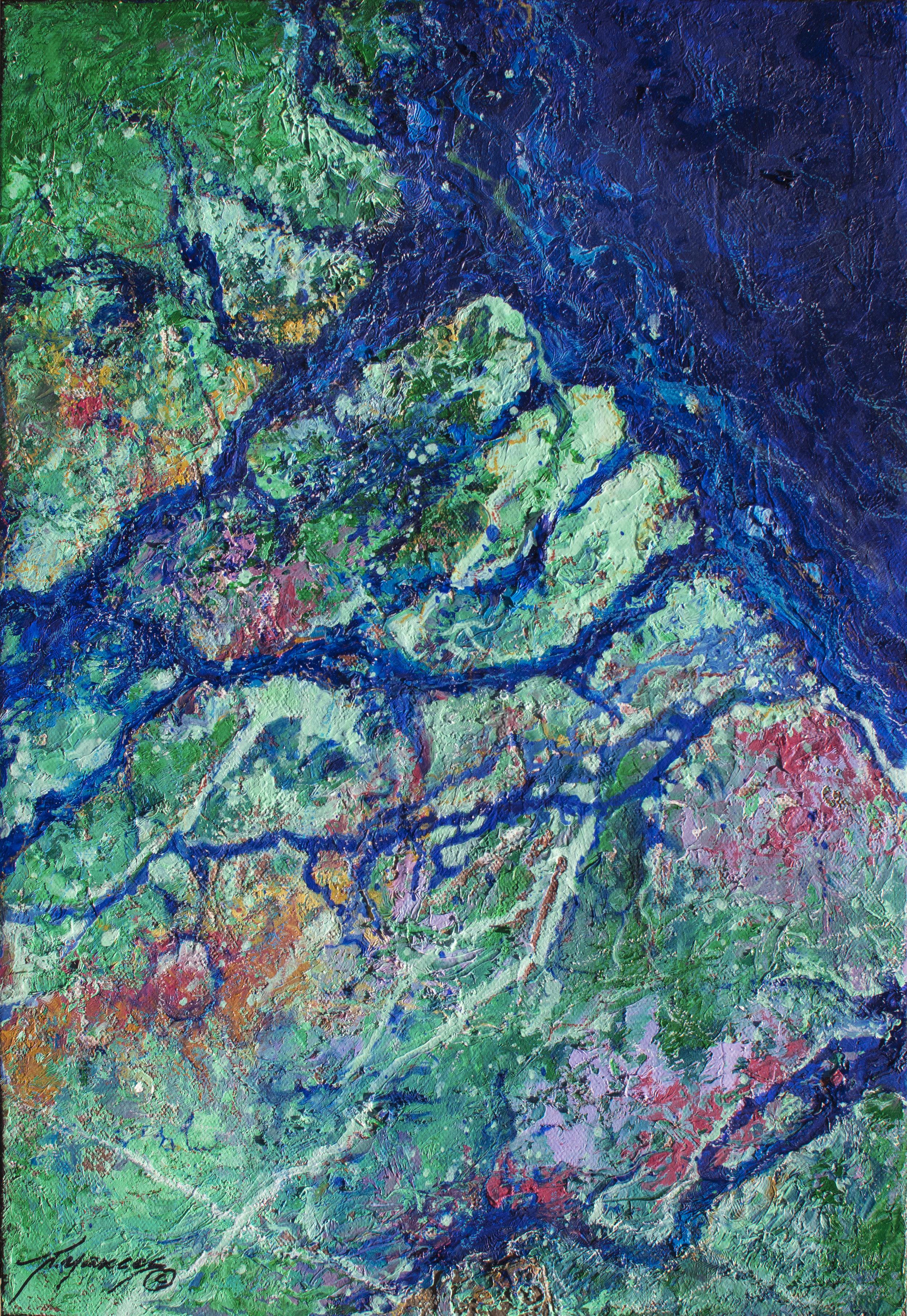 Amazon River II