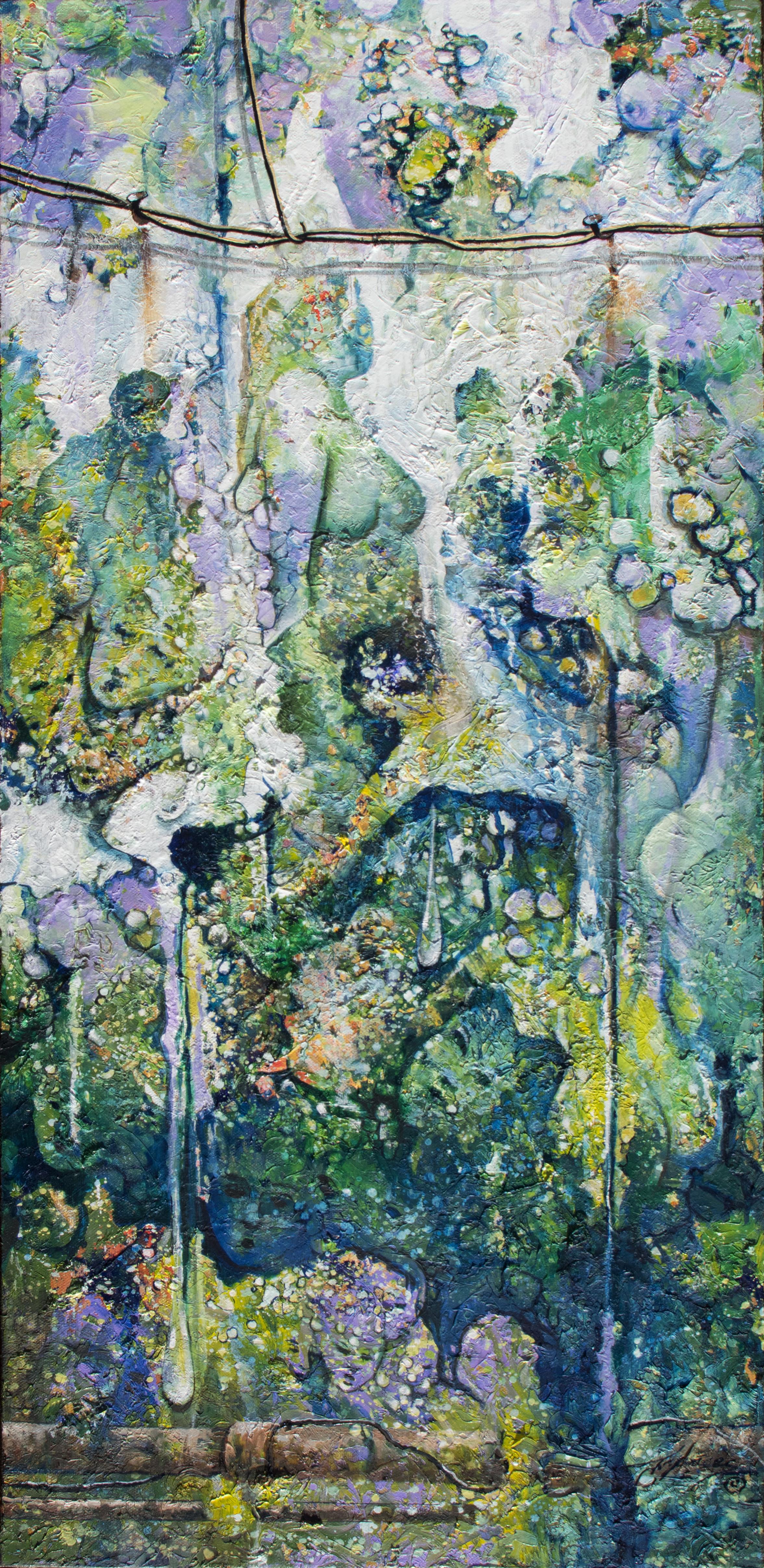 Colores de la Selva