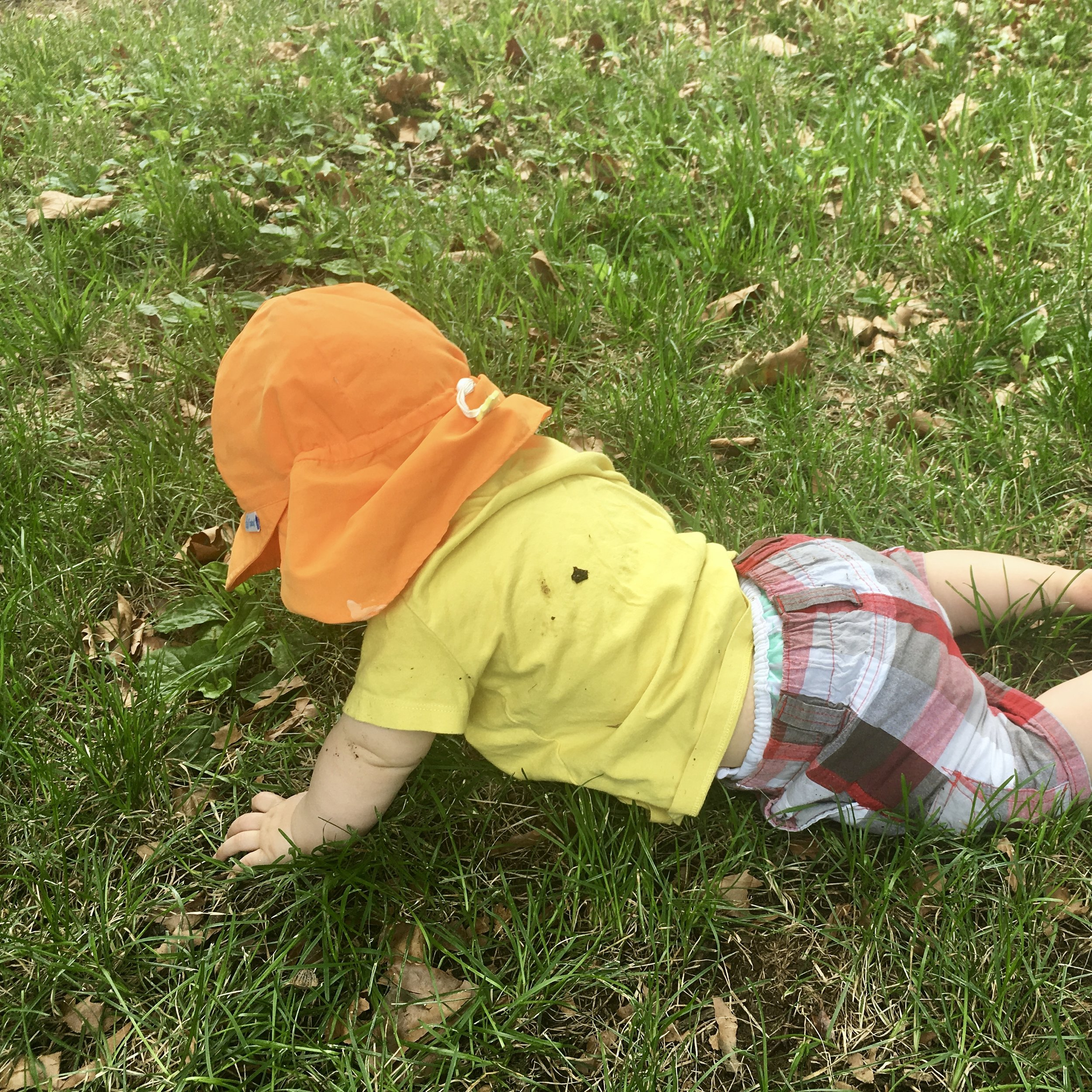Image: a baby in an orange sun hat crawls in the grass and fallen leaves.