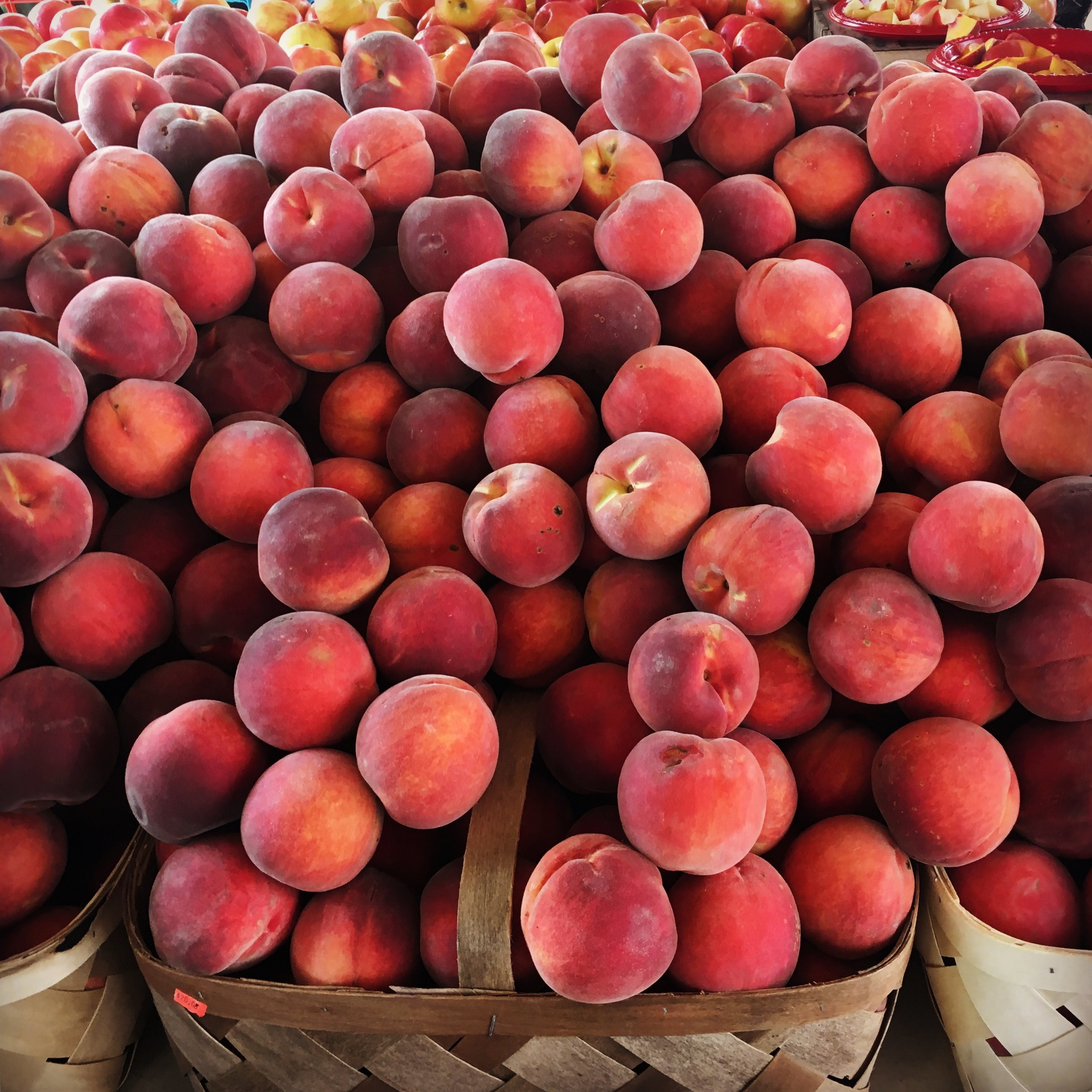 Image: Overflowing baskets of peaches at a farmer's market. Image copyright: Elisabeth Caron