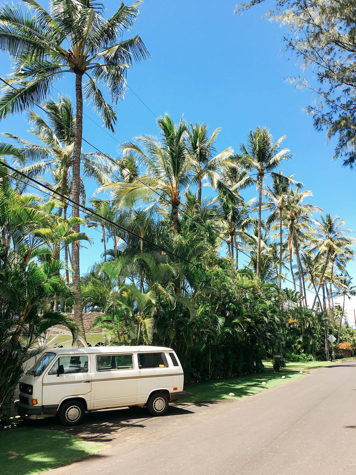 AdamSzafranski-Oahu-Hawaii-012.jpg