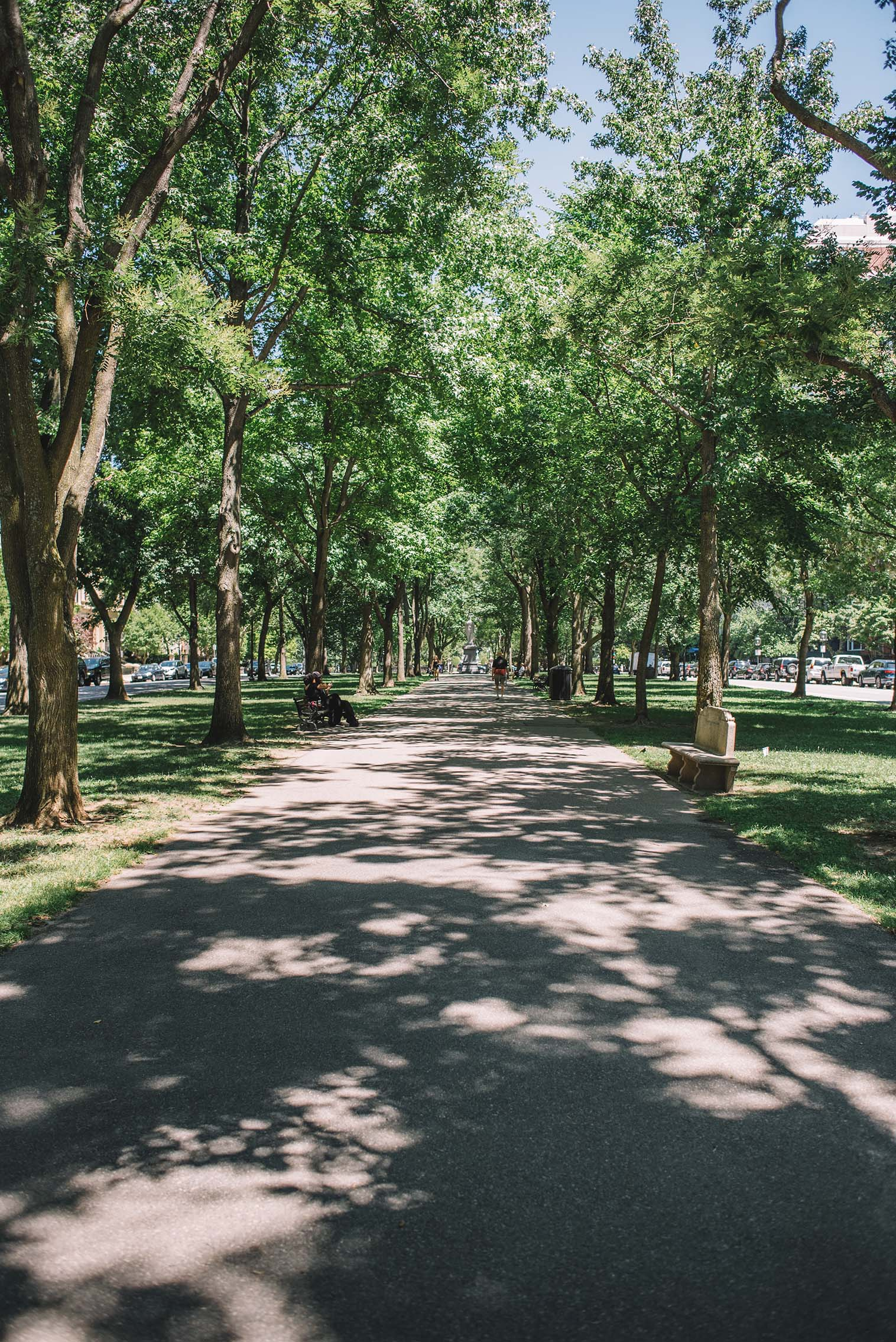 AdamSzafranski-Boston-05.jpg