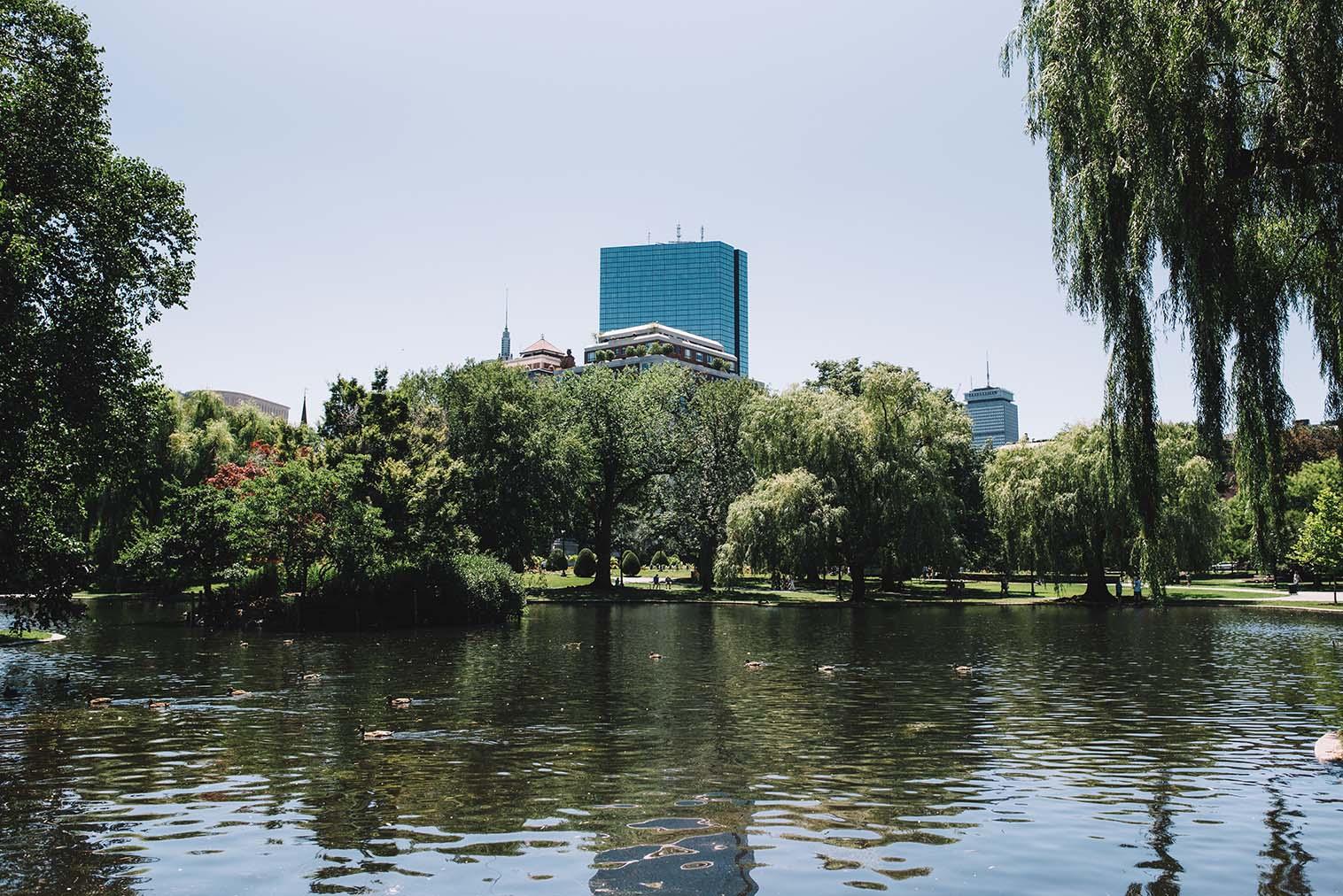 AdamSzafranski-Boston-04.jpg