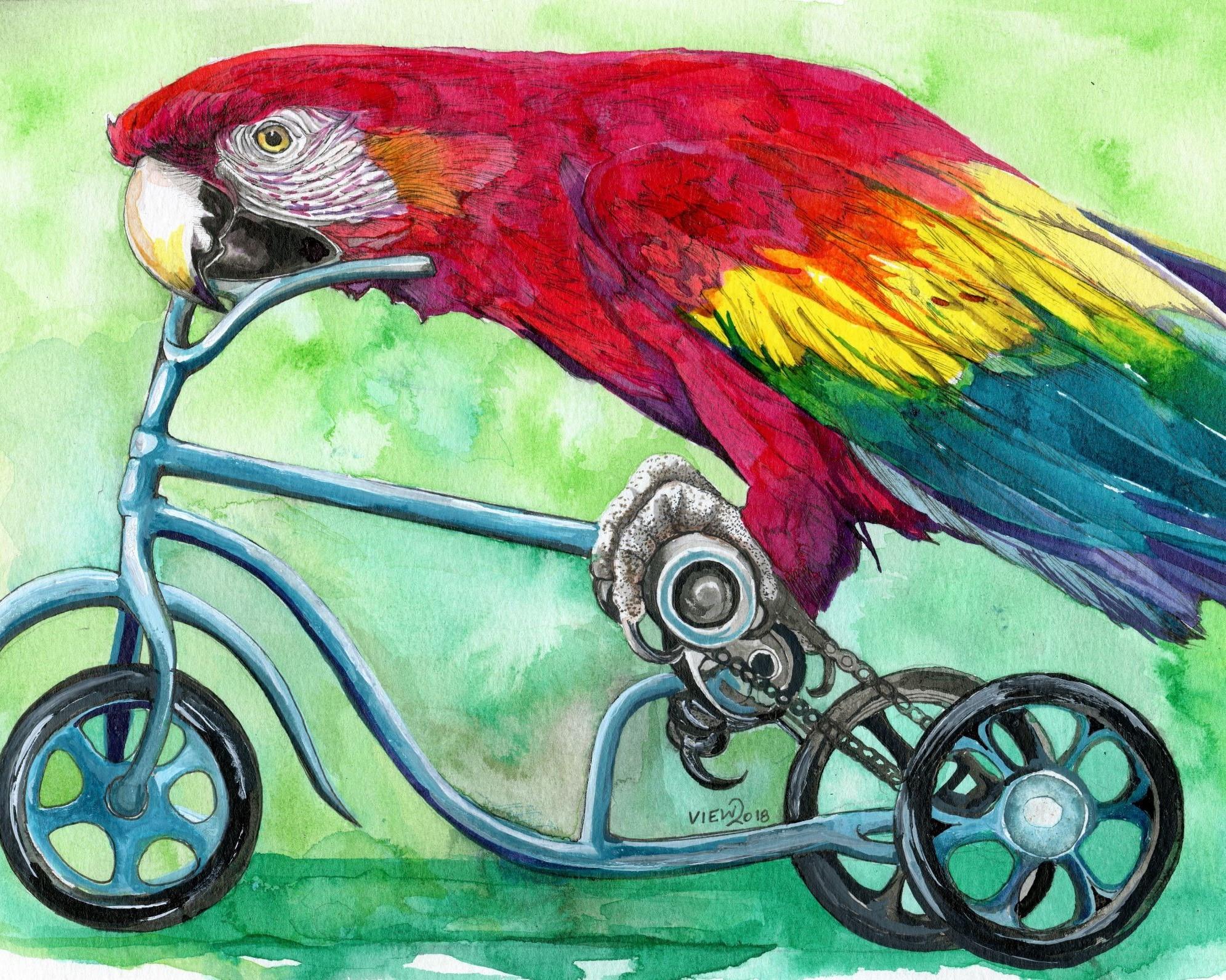 parrot resized 8 x10.jpg