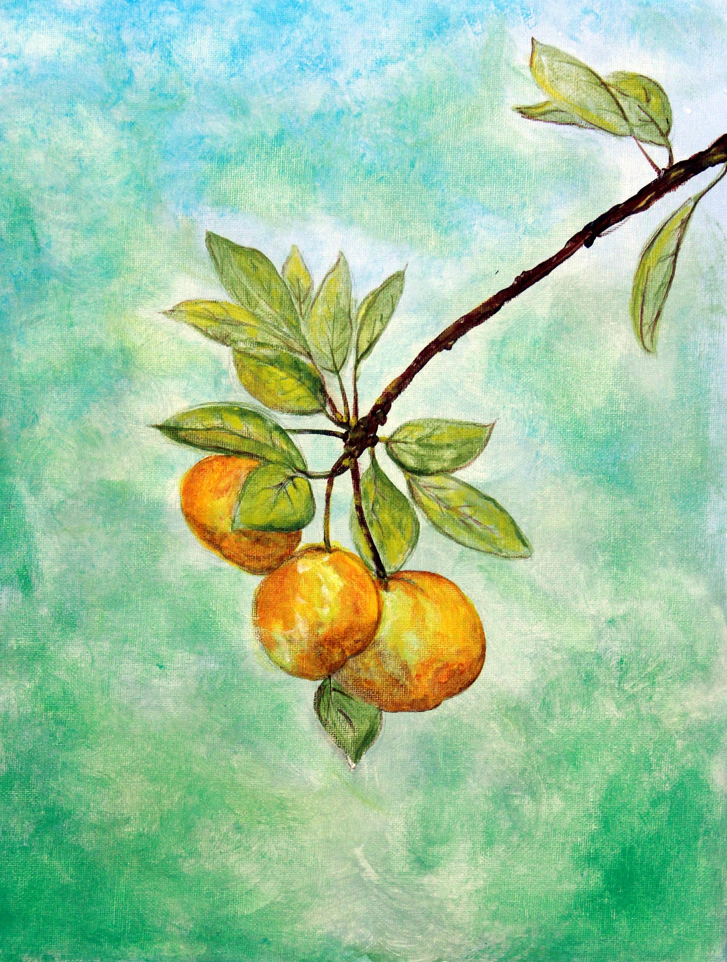 3) Hanging Fruit