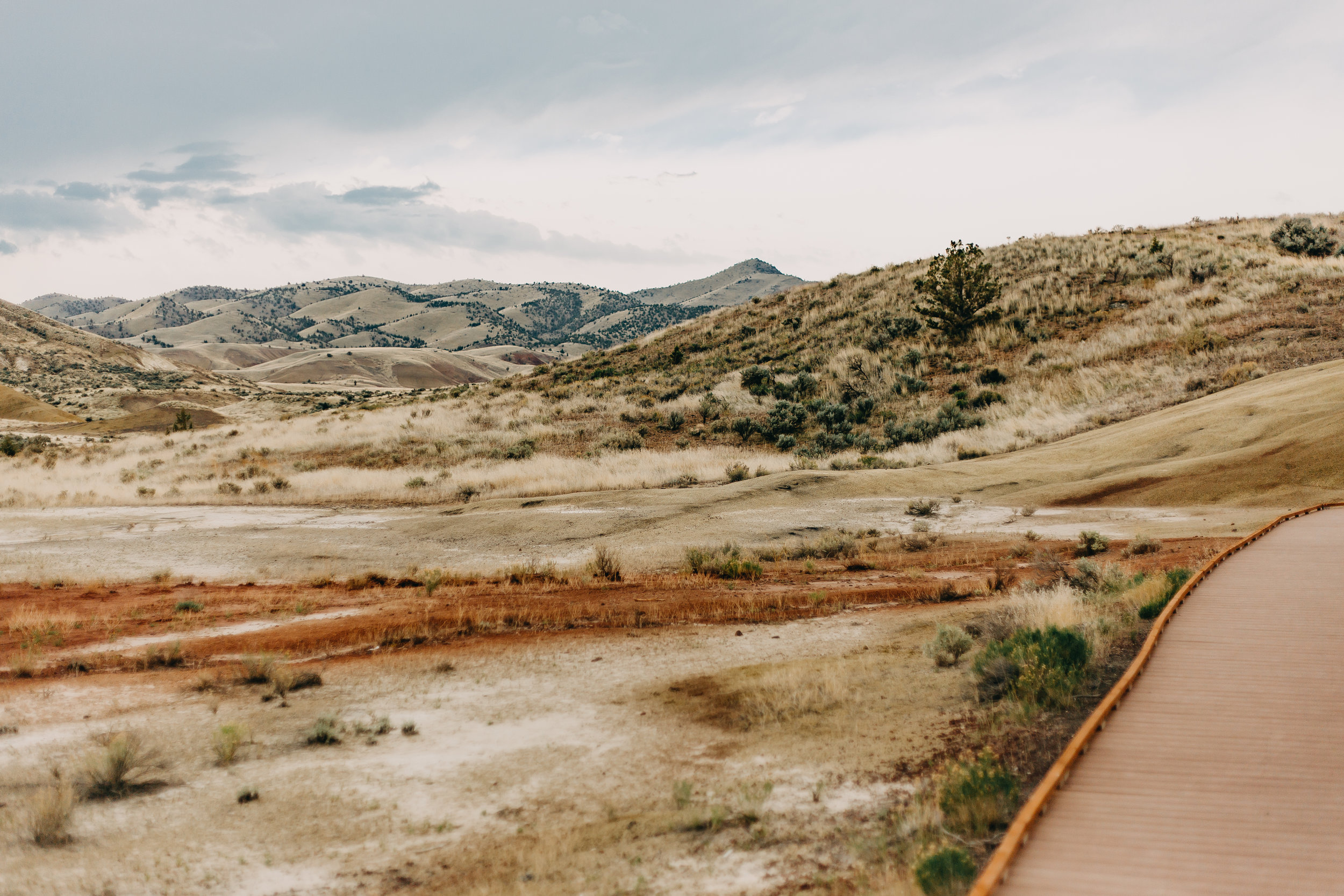 Marti-Painted-Hills-3.jpg