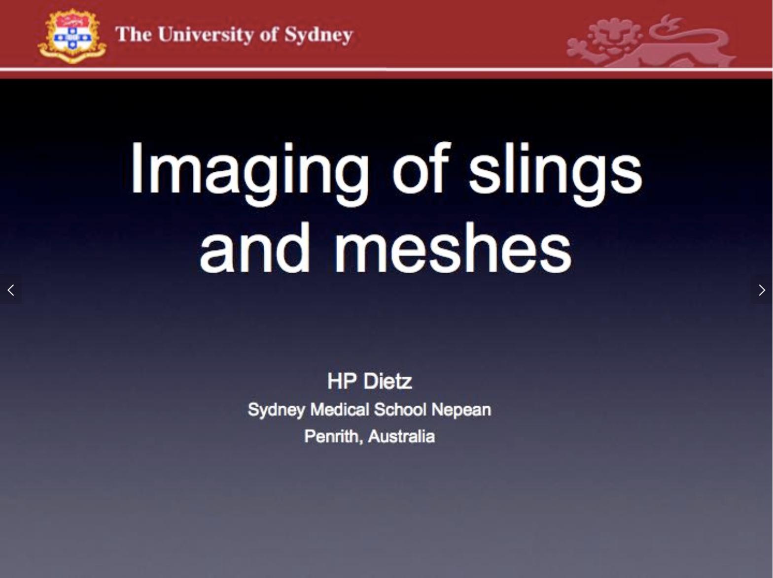 Imaging of slings.png