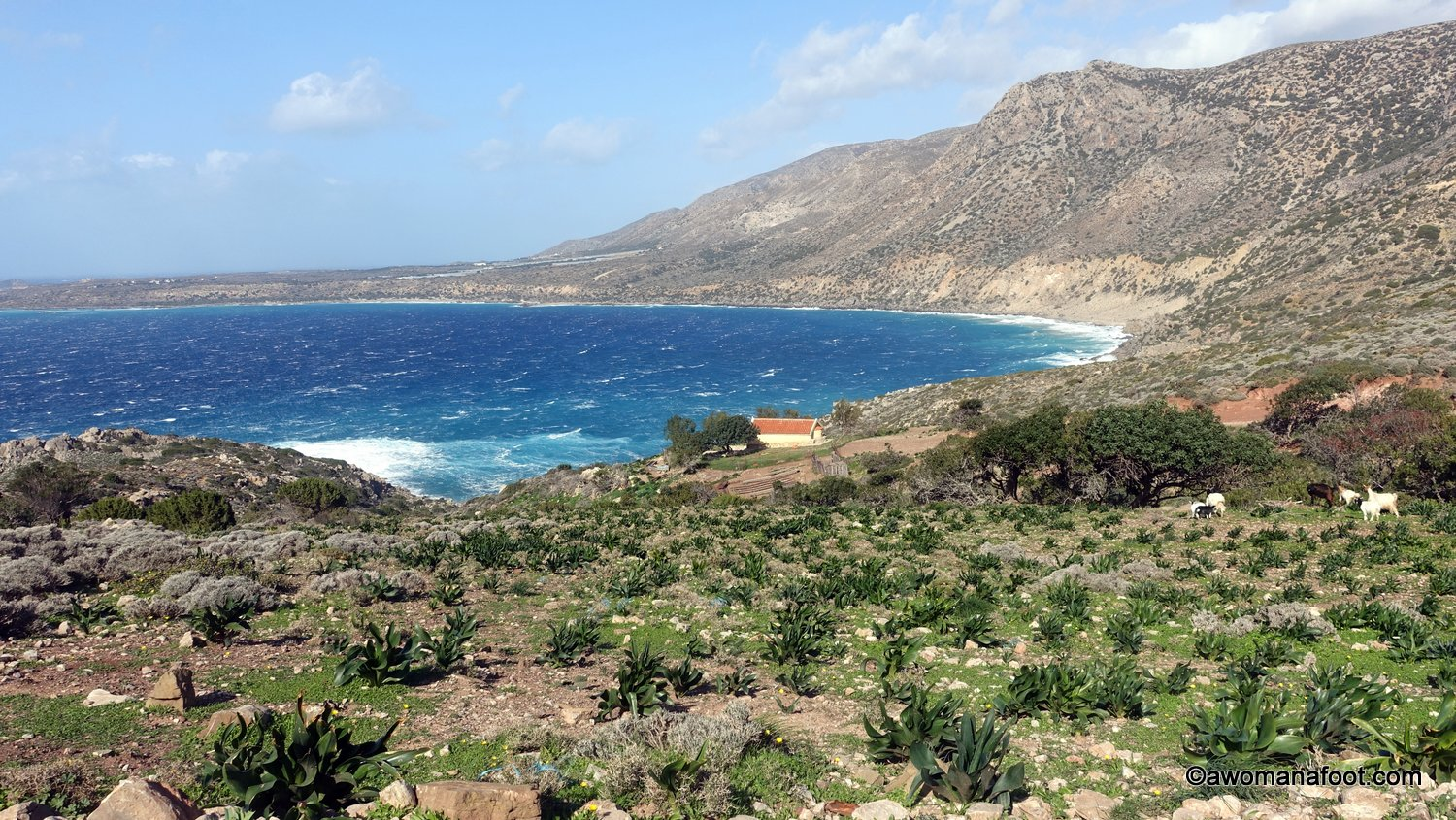 Dramatic views, running goats, predawn Elafonissi beach and countless rocks - my solo trek through Crete continues! Check days 3-5 along the E4 trail (and off it) - from Kampos through Chrissoskalitissis Monastery and Elafonissi Beach to Paleochora. #Crete #Greece #hiking #E4trail | Hiking trails in Europe | Women Hiking solo | HIking solo on Crete | Hiking Trails on Crete | Awomanafoot.com