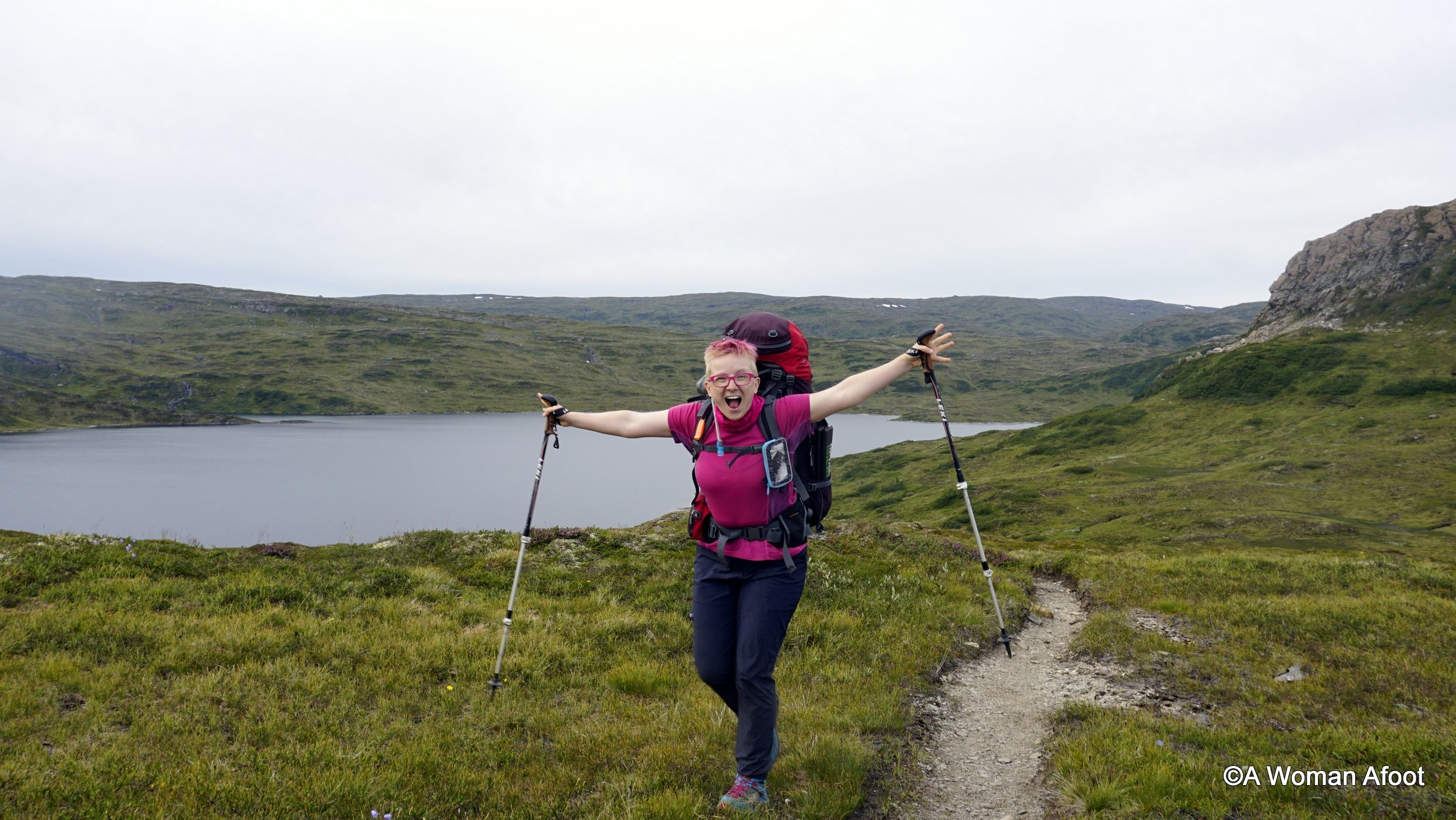 All the WHYs and HOWs of TREKKING POLES: benefits, best uses, adjustments, downsides, and tips to make you into a hiking goddess :) awomanafoot.com