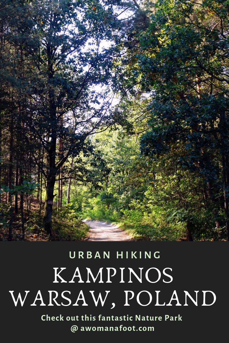 Kampinos National Park - a true natural gem right outside of Warsaw, Poland awomanafoot.com - Just a short ride by bus you will find a unique green oasis filled with natural beauty and rich history. Click to learn more!   What to do in Warsaw   Polish History   Hiking near Warsaw   Urban Hiking Warsaw   Nature Parks in Europe   UNESCO   #Warsaw #Poland #Kampinos #NationalPark #Hiking #PolishHistory #EasternEurope #UrbanHiking