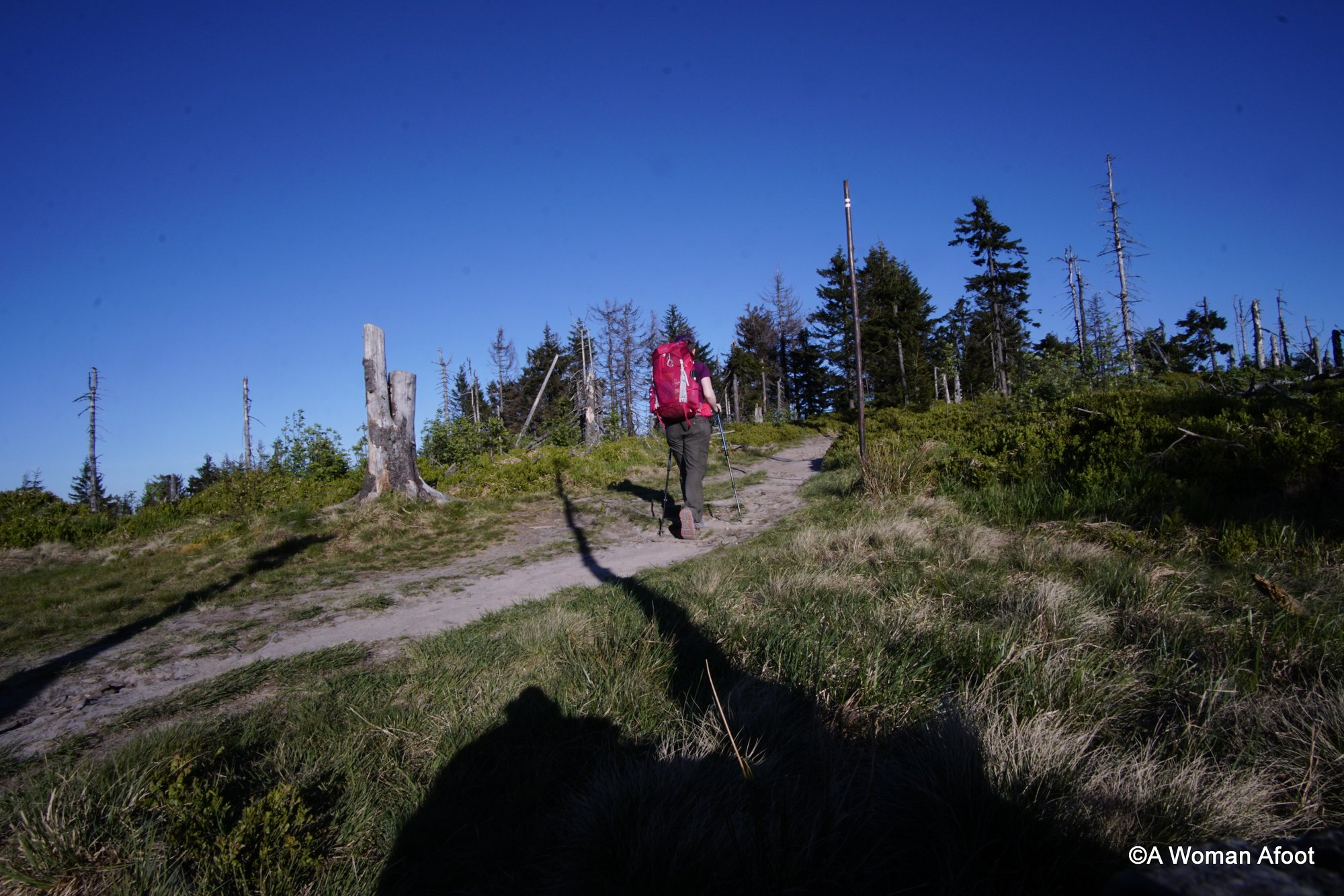Check out this in-depth review of Gregory Maven 45 backpack for women! Perfect for overnight hikes and week-long treks. Learn more @ AWOMANAFOOT.COM. | Gear Reviews | Backpacks for Women | Hiking Gear for Women | Rucksacks for Hiking Women | What backpack to take for a hike | #Hiking #Backpacking #Backpack #GregoryBackpack #GearReview #Reviews #FemaleHikers #HikingWomen |