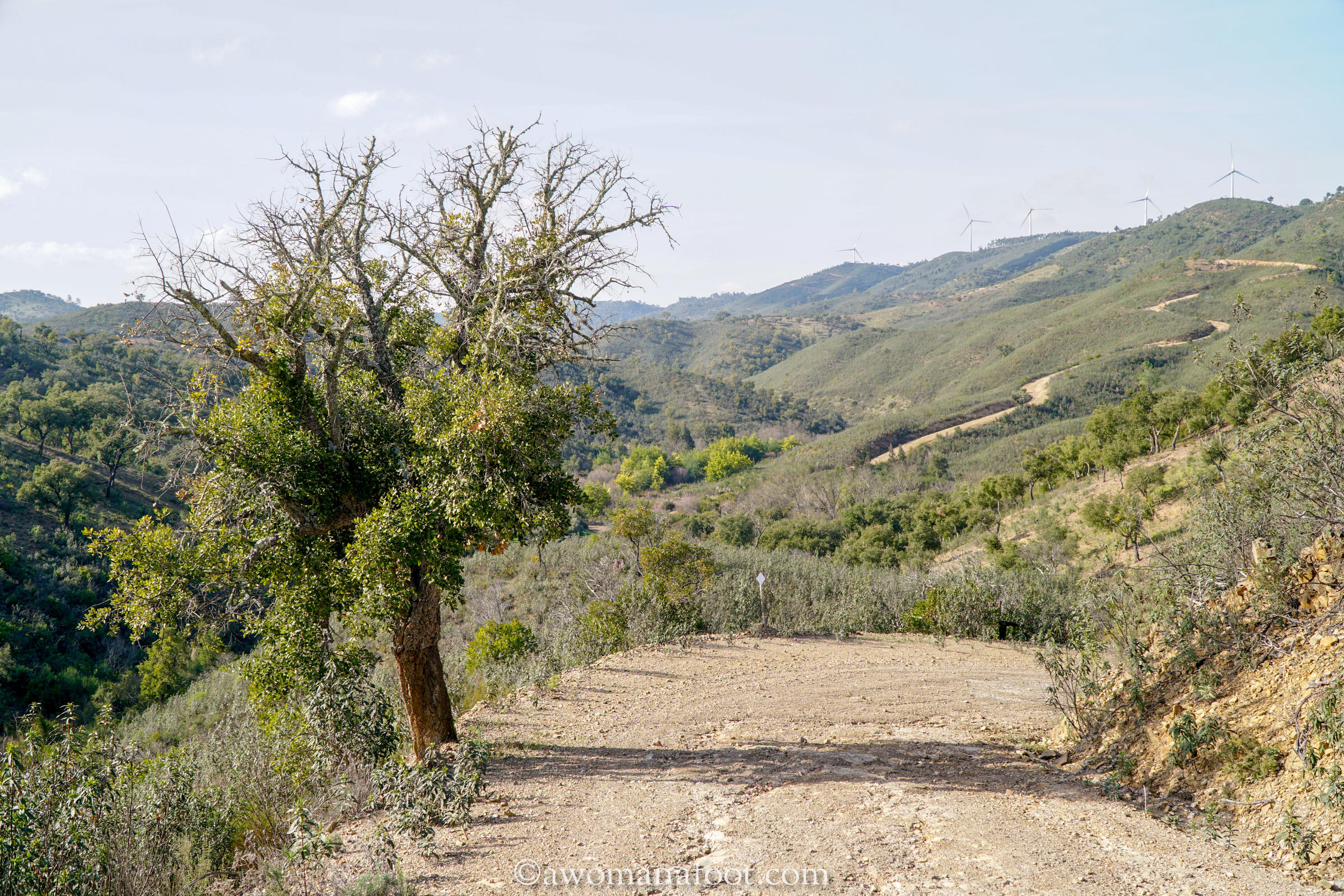 Hiking solo in Portugal on the Via Algarviana Trail! Click to read about the section from Vaqueiros, through Cachopo, to Barranco do Velho @awomanafoot.com. Active travel in Portugal | Hiking trails in Europe | Female solo hikers | Anxiety | What to do in Algarve | #Hiking #Portugal #Algarve #ViaAlgarviana #HikingSolo #Outdoors #Anxiety #Aspie #EuropeanTrail