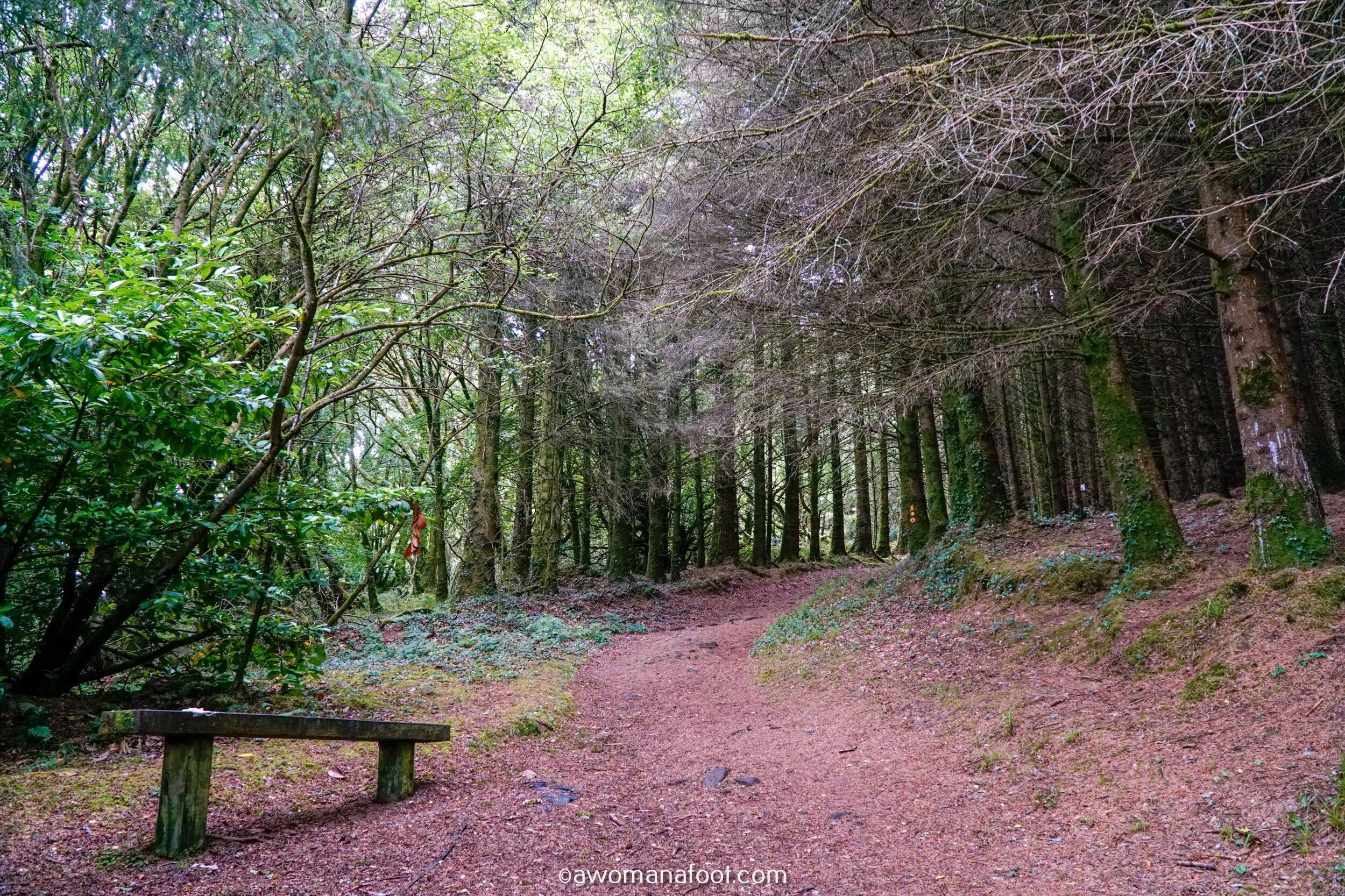 Hiking Solo Sli Gaeltacht Mhuscrai Mallow Ballyvourney46.jpg
