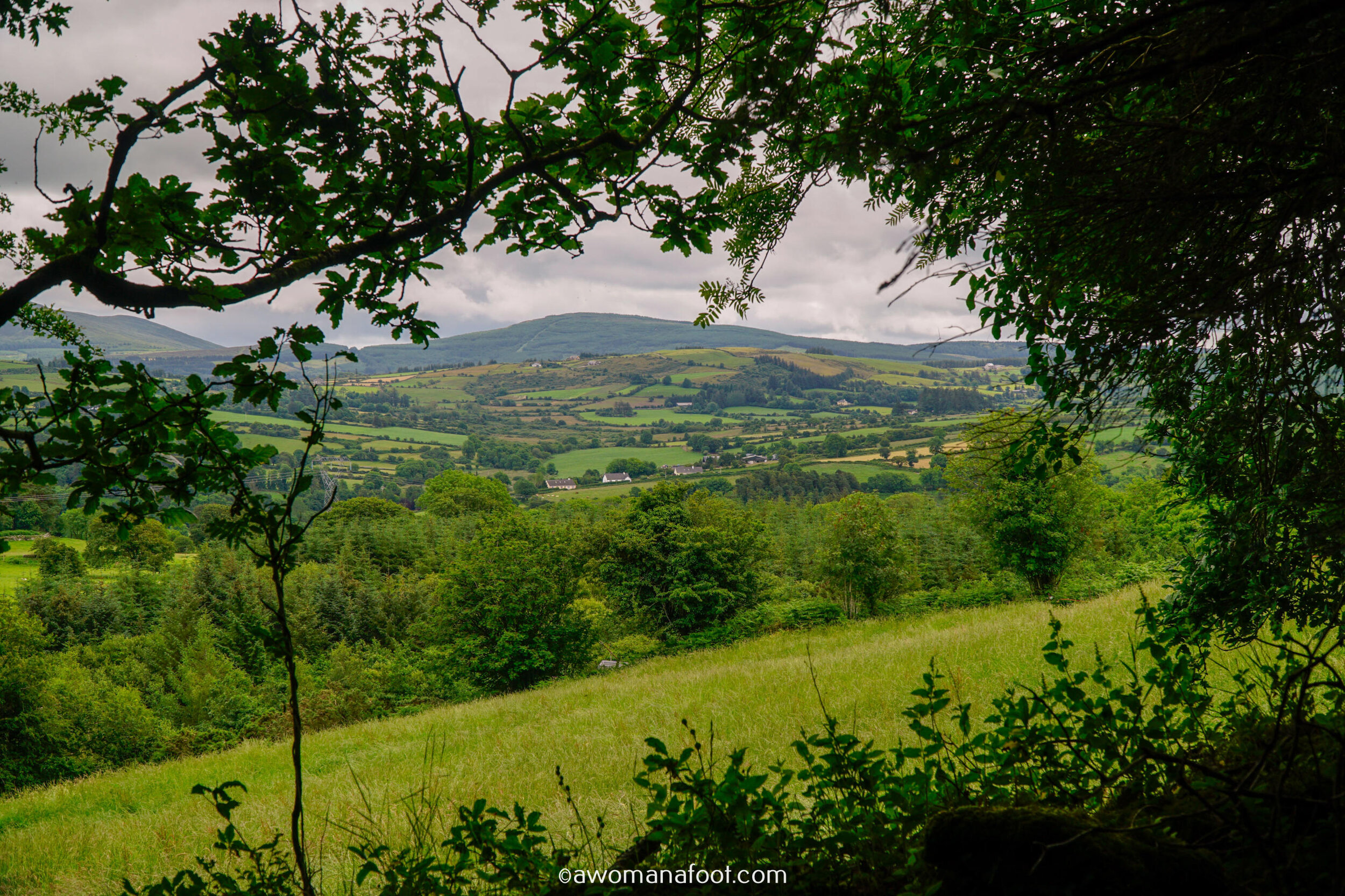 Hiking Solo Sli Gaeltacht Mhuscrai Mallow Ballyvourney54.jpg