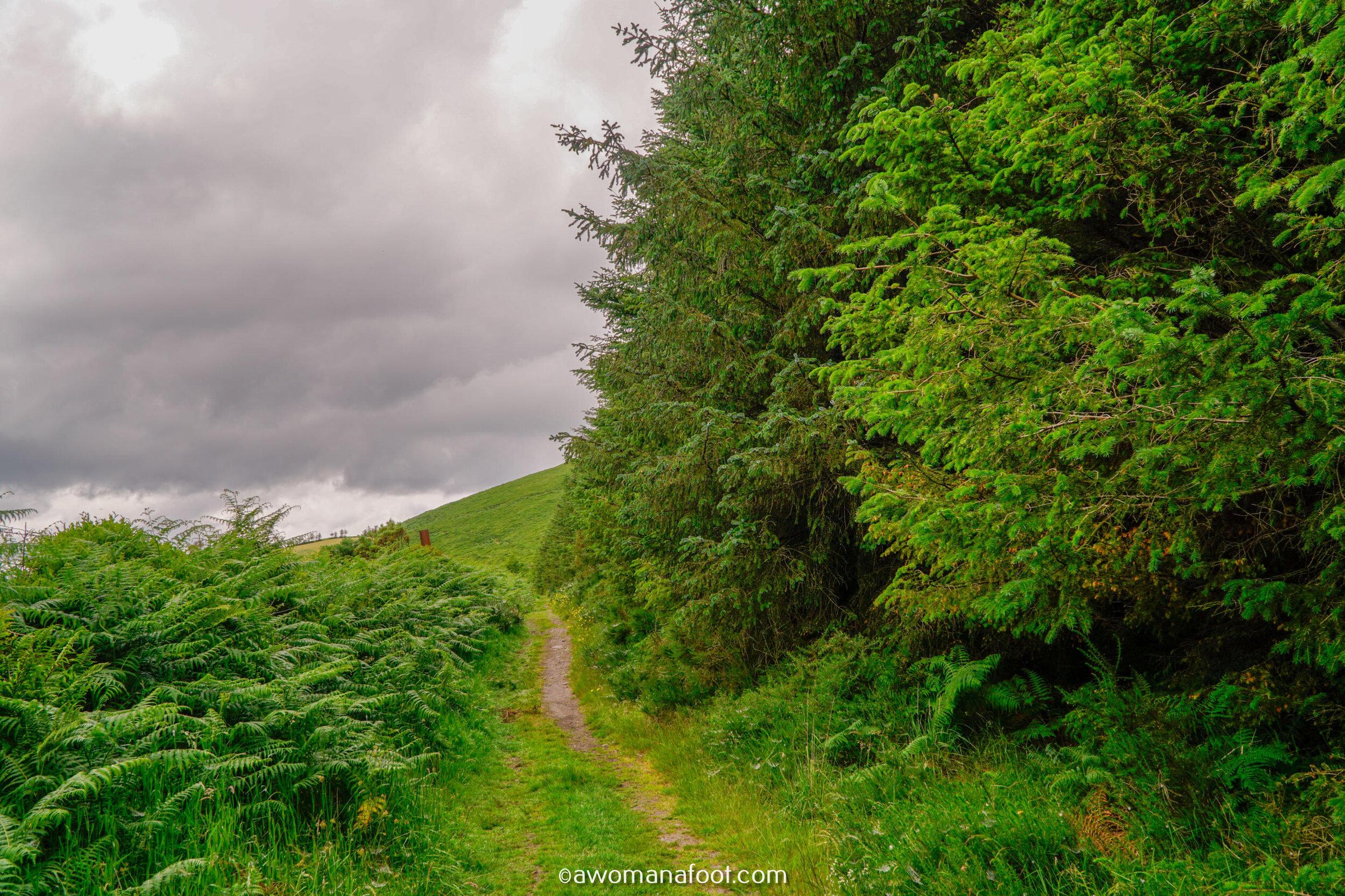 Hiking Solo Sli Gaeltacht Mhuscrai Mallow Ballyvourney59.jpg