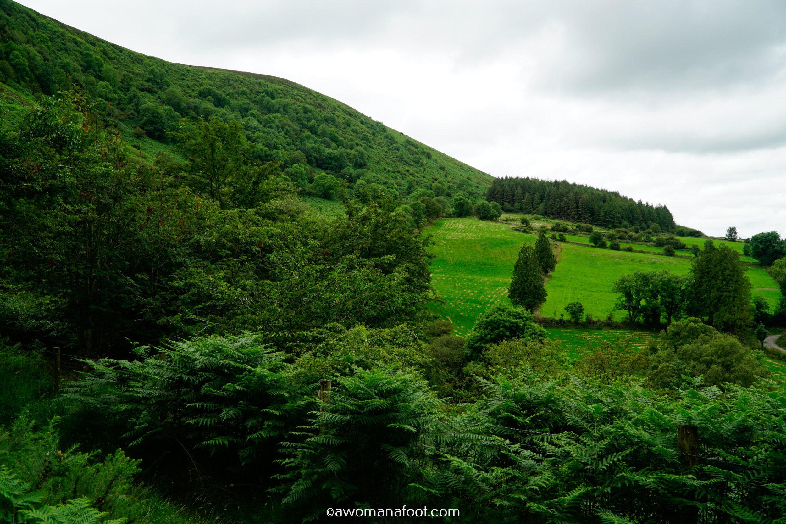 Hiking Solo Sli Gaeltacht Mhuscrai Mallow Ballyvourney82.jpg
