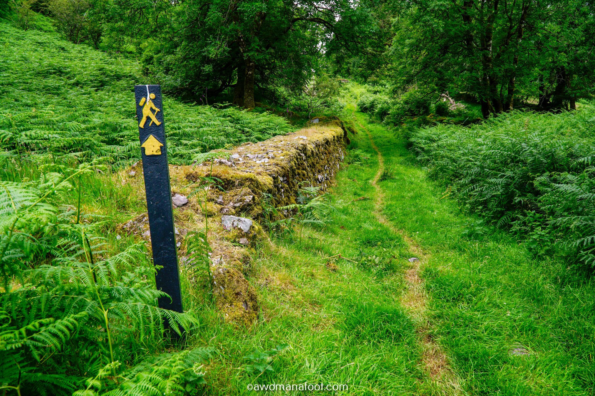 Hiking Solo Sli Gaeltacht Mhuscrai Mallow Ballyvourney88.jpg