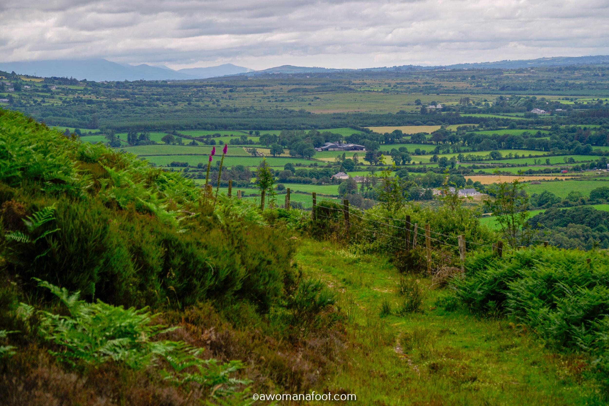 Hiking Solo Sli Gaeltacht Mhuscrai Mallow Ballyvourney102.jpg
