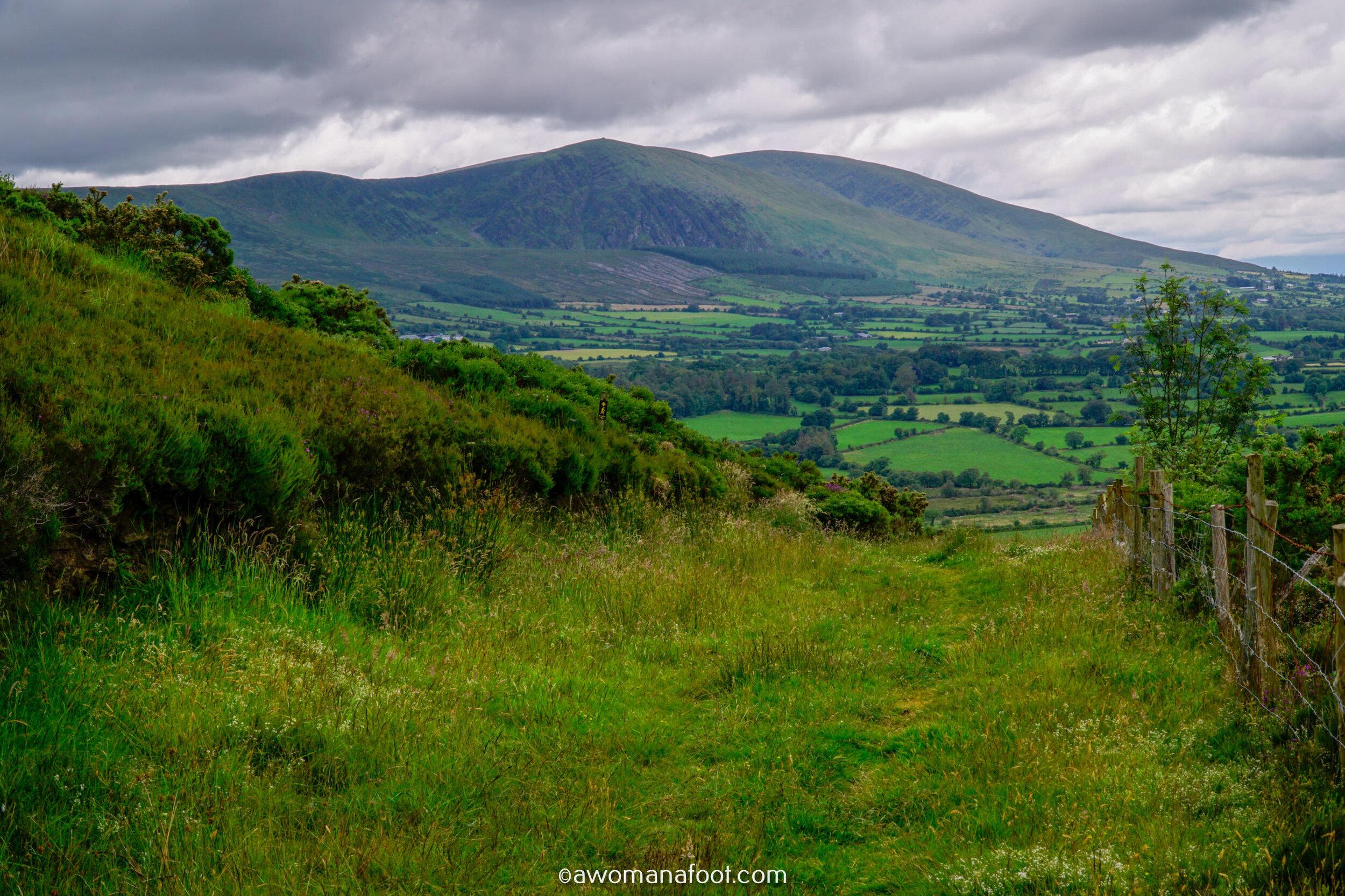 Hiking Solo Sli Gaeltacht Mhuscrai Mallow Ballyvourney105.jpg