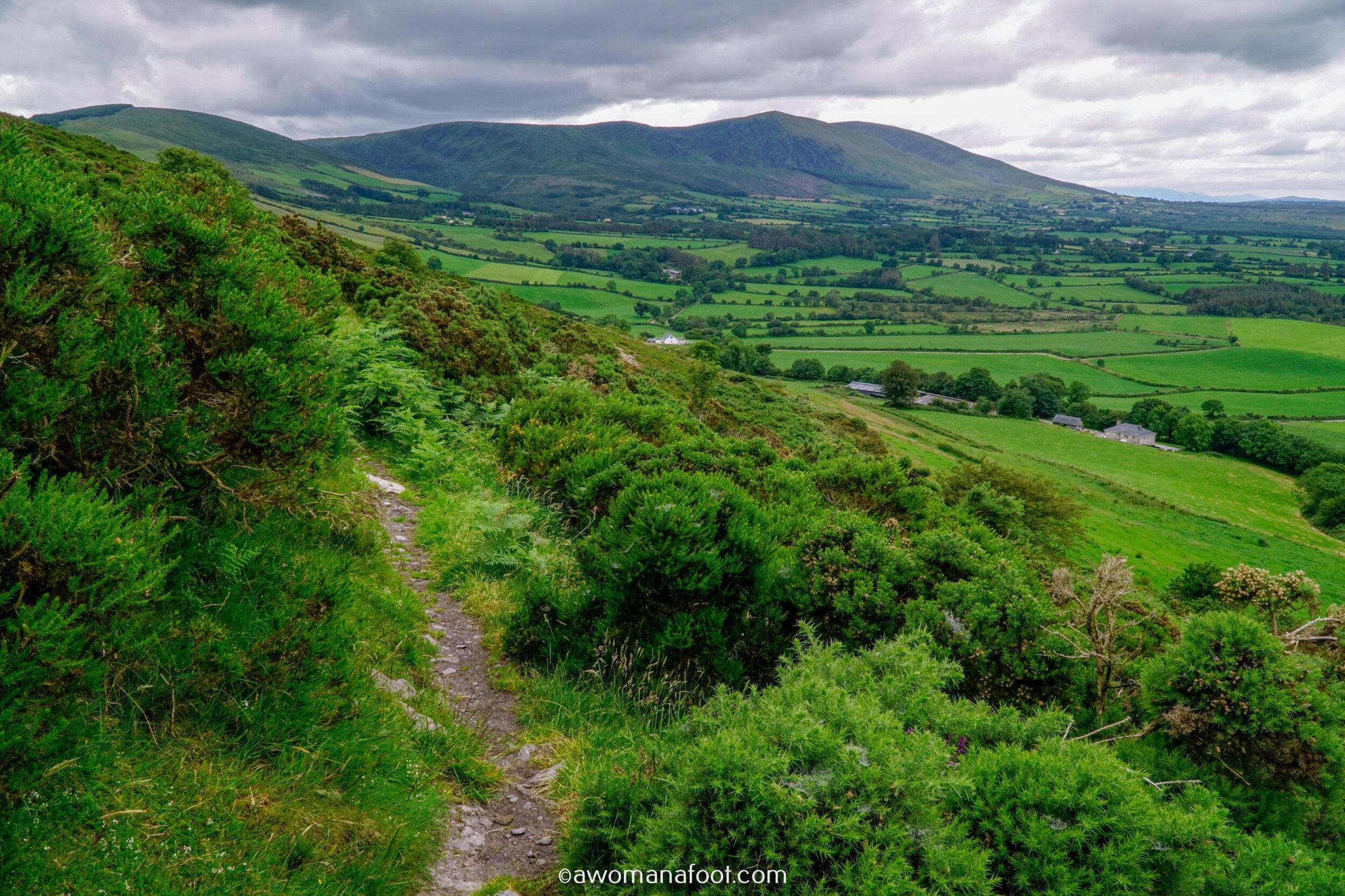 Hiking Solo Sli Gaeltacht Mhuscrai Mallow Ballyvourney110.jpg