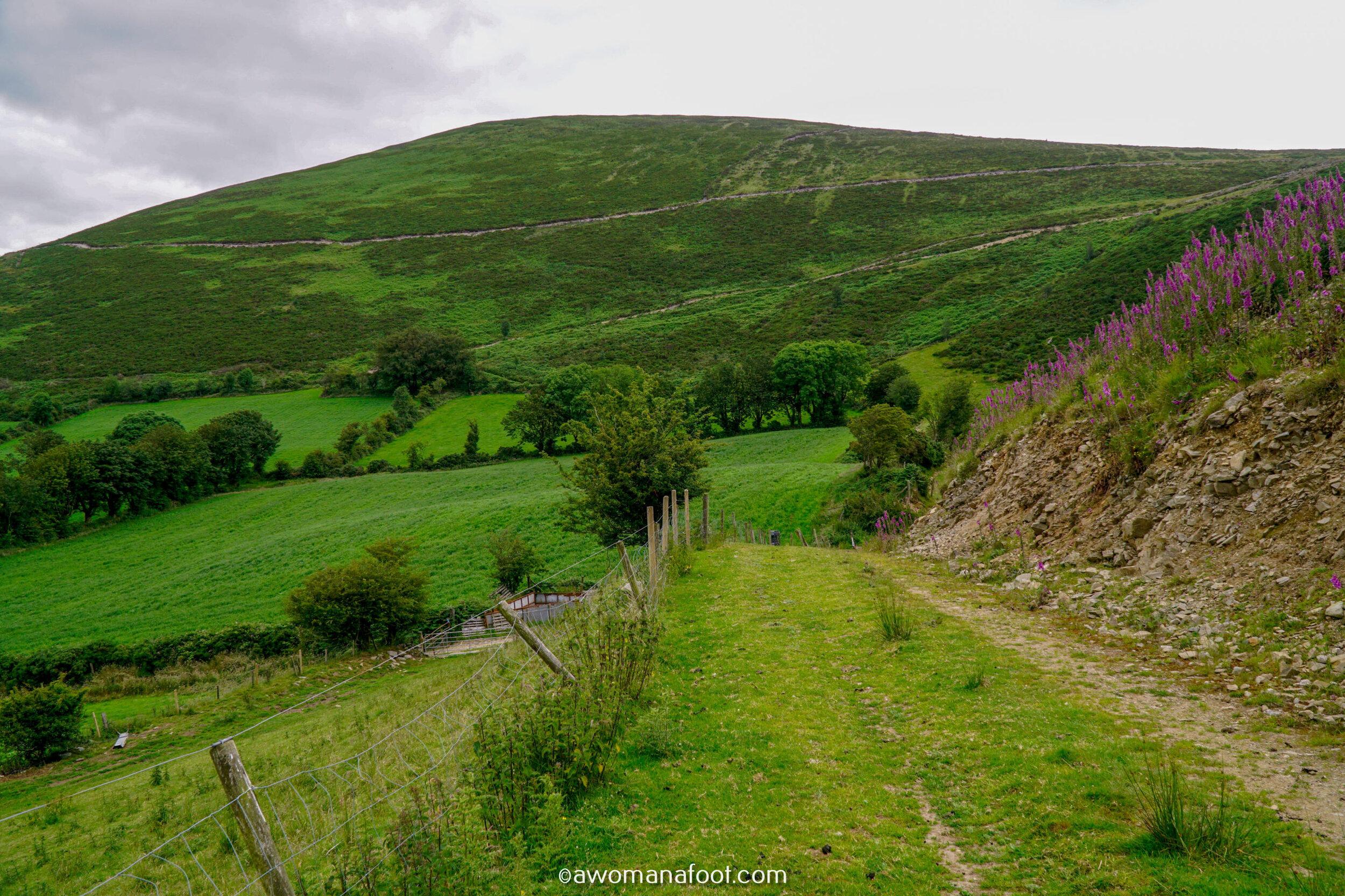 Hiking Solo Sli Gaeltacht Mhuscrai Mallow Ballyvourney123.jpg