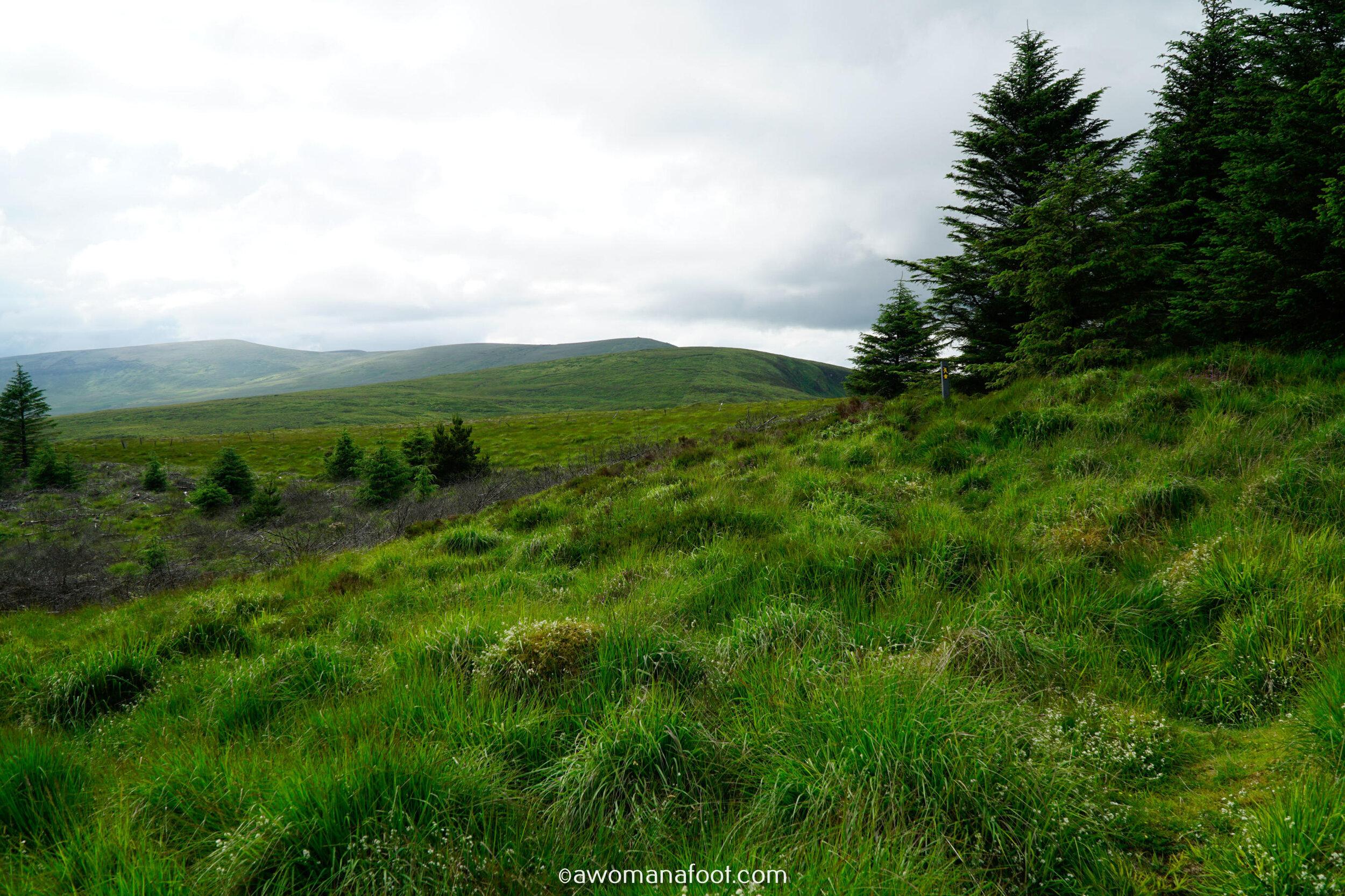 Hiking Solo Sli Gaeltacht Mhuscrai Mallow Ballyvourney180.jpg