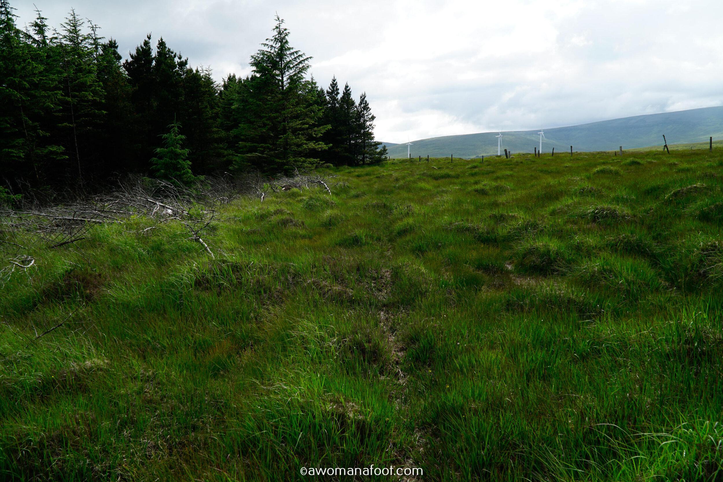 Hiking Solo Sli Gaeltacht Mhuscrai Mallow Ballyvourney182.jpg