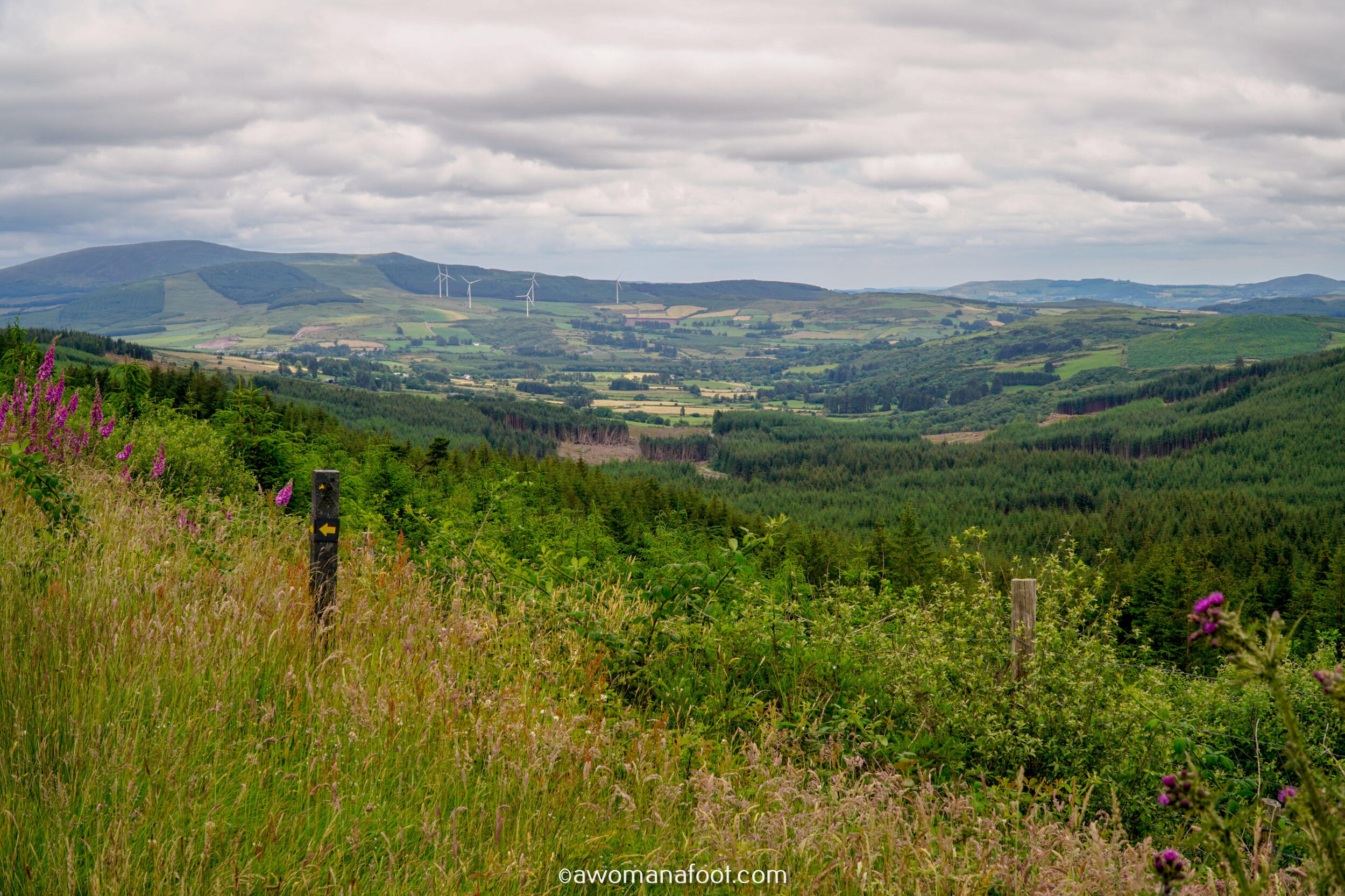 Hiking Solo Sli Gaeltacht Mhuscrai Mallow Ballyvourney291.jpg