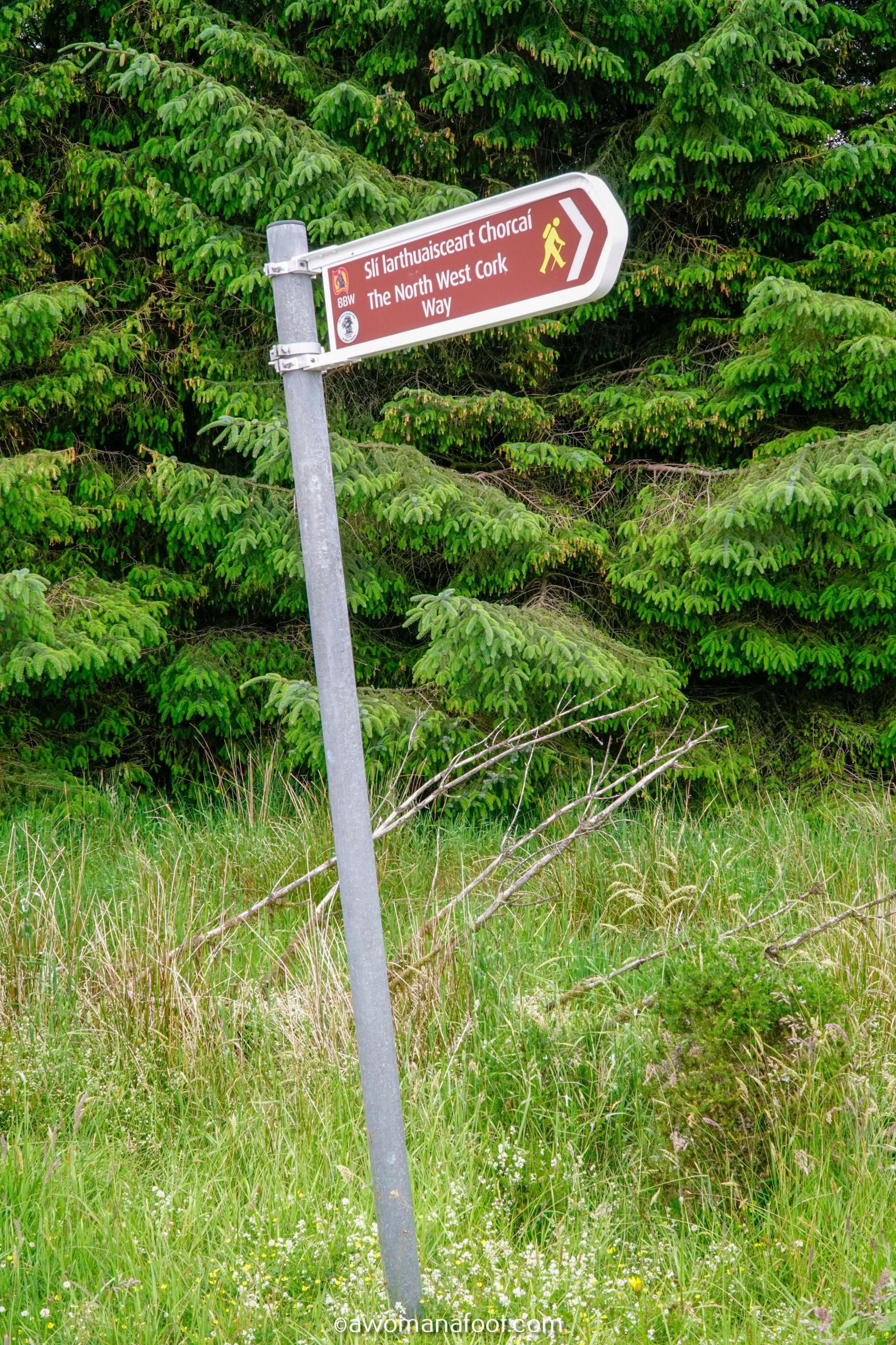 Hiking Solo Sli Gaeltacht Mhuscrai Mallow Ballyvourney292.jpg