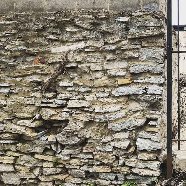 """This is a gorgeous wall with a rich history is on the back of a lot for a rehab we are doing in Over-the-Rhine, Cincinnati, Ohio. This wall was most likely built over 100 years ago. It is most likely only 2' wide of dry stacked rock. Roots from nearby trees meandered their way through the wall. And at some point, someone built a block wall on top of it. Sometimes people want to conceal these """"ugly"""" walls by putting a smoother finish coating on them. However, that is not recommended because it creates hydrostatic pressure on the wall as water, now able to migrate through the wall, then becomes trapped behind the wall and causes the wall to degrade faster.  #history #structure #design #timetellsastory #design #architecture #architectcincinnatiohio #cincinnati #otr #rehab"""