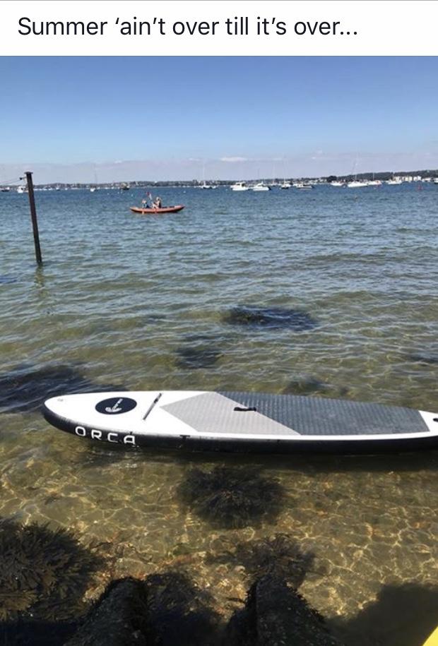 orca clear.jpg