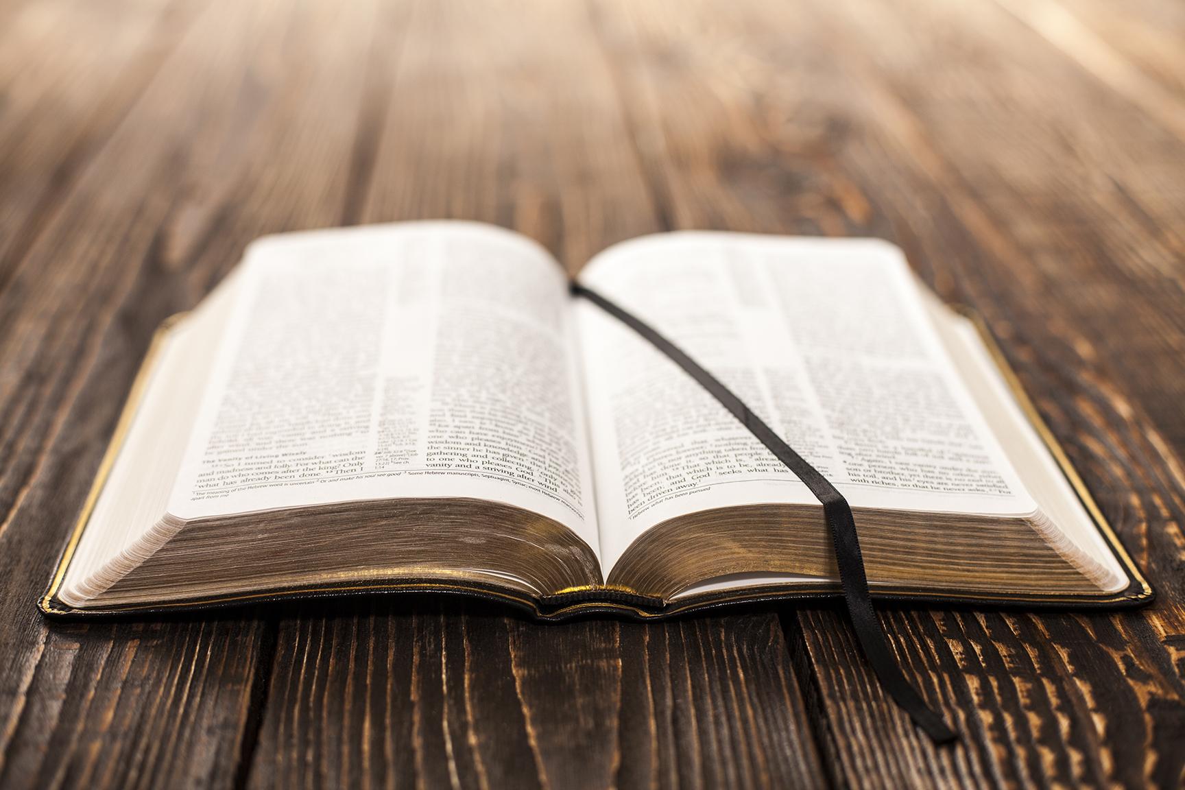 오늘의 성경 읽기 - 생명의 양식으로 하루를 시작하세요