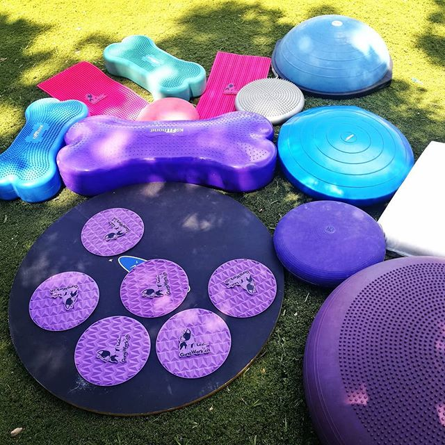 Et cet après midi : mini camps d'été proprioception 🌈😍