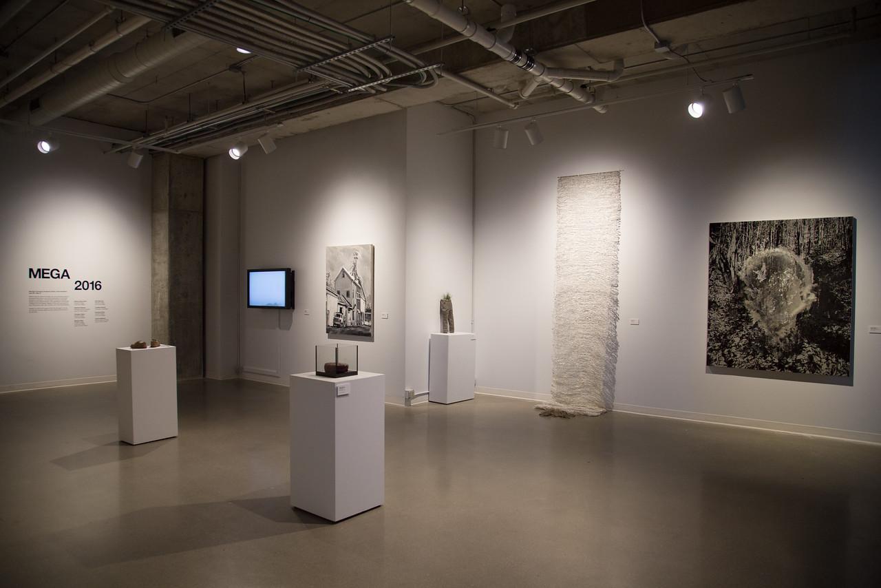 UICA Mega 2017 Exhibition Galleries
