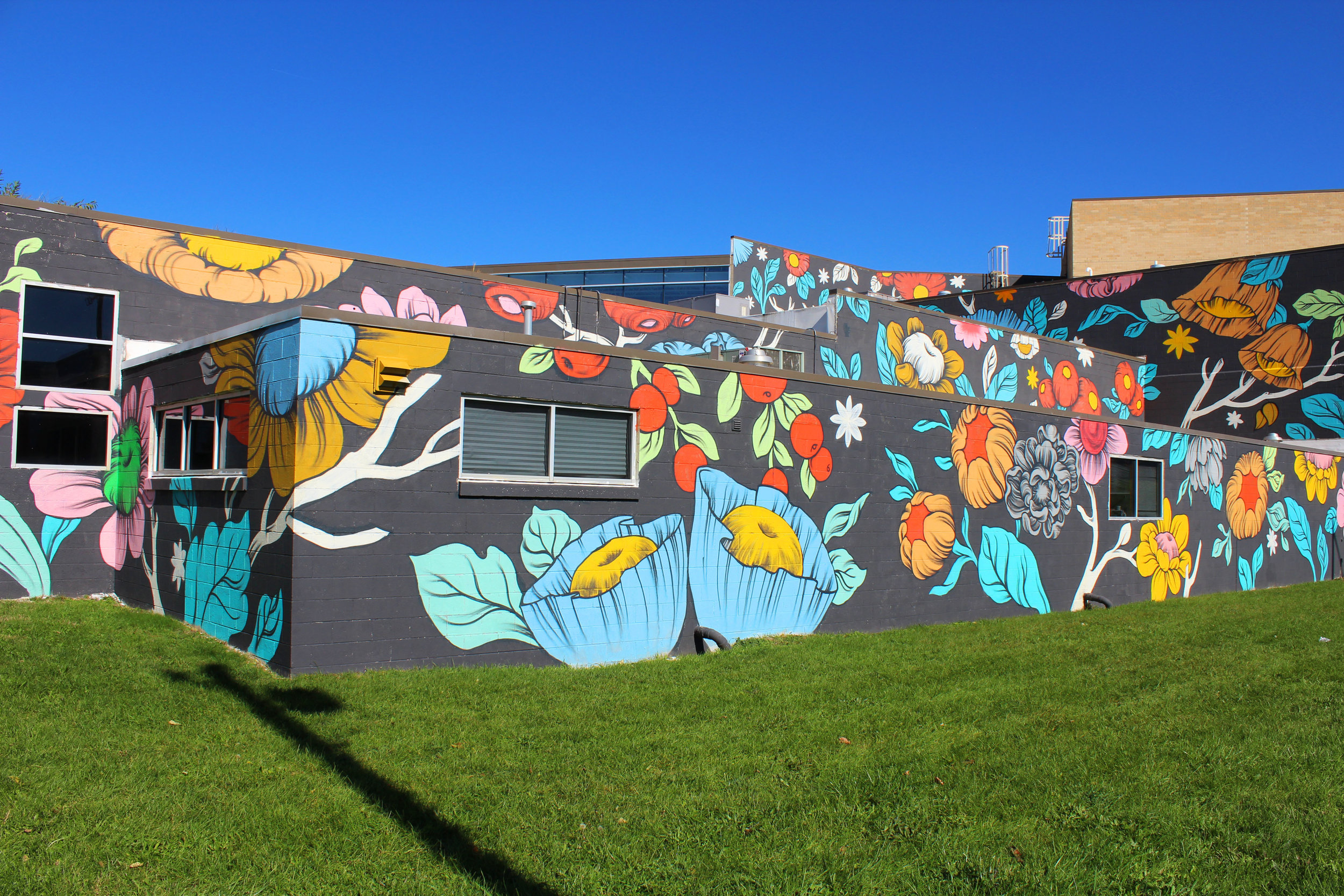 Ouizi floral mural on exterior of Grand Rapids Ballet