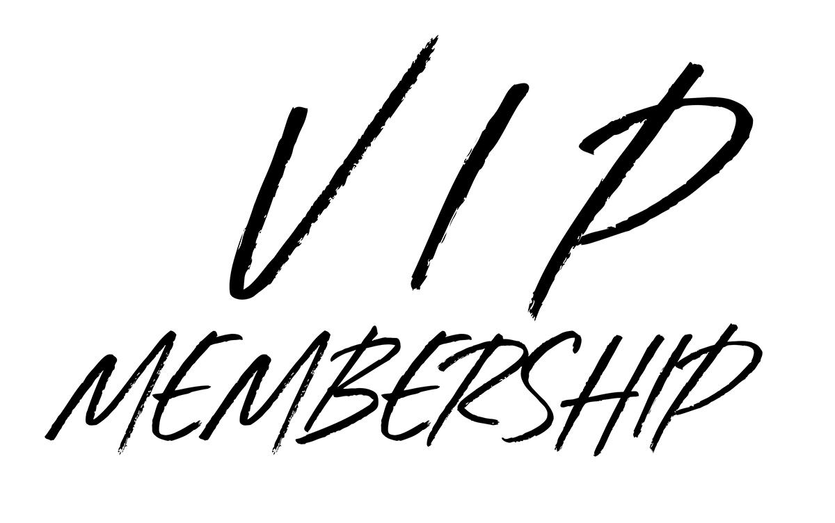 vip_logo_web.jpg