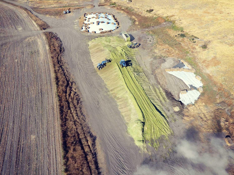dlr-img-ranch-farm-1500x1500-1.jpg