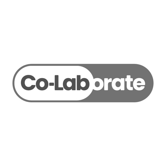 CoLab-100.jpg